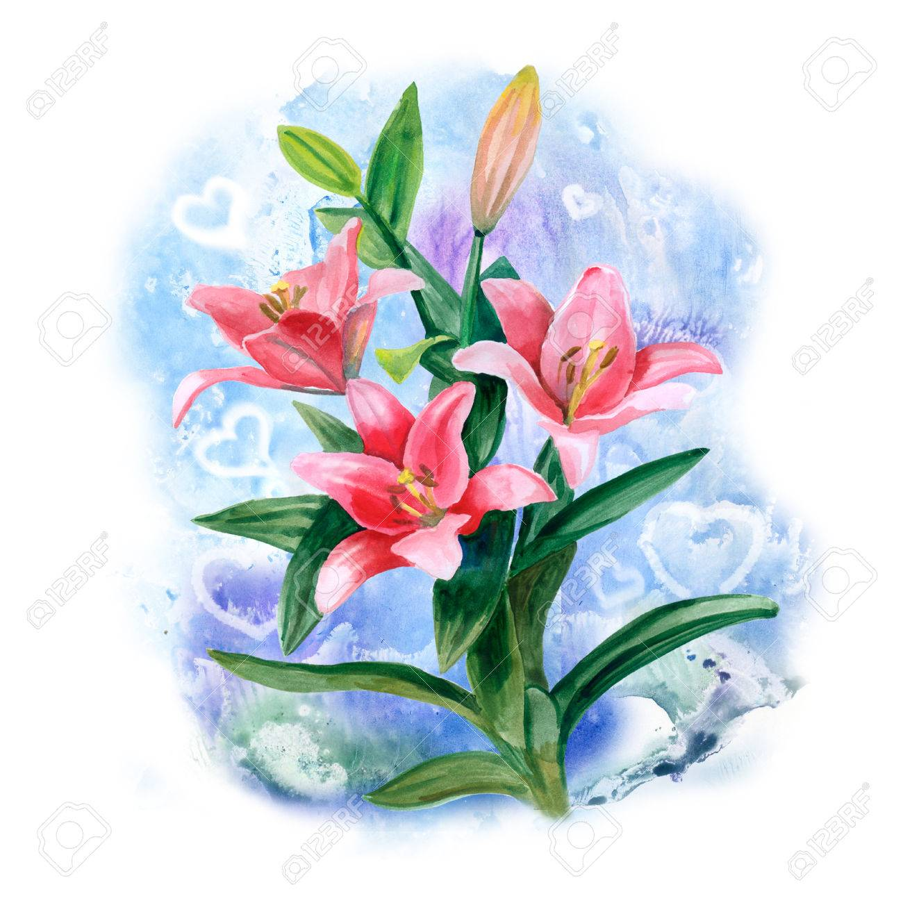 Hand Drawn Watercolor Lily Flowers Isolated On Blue Background