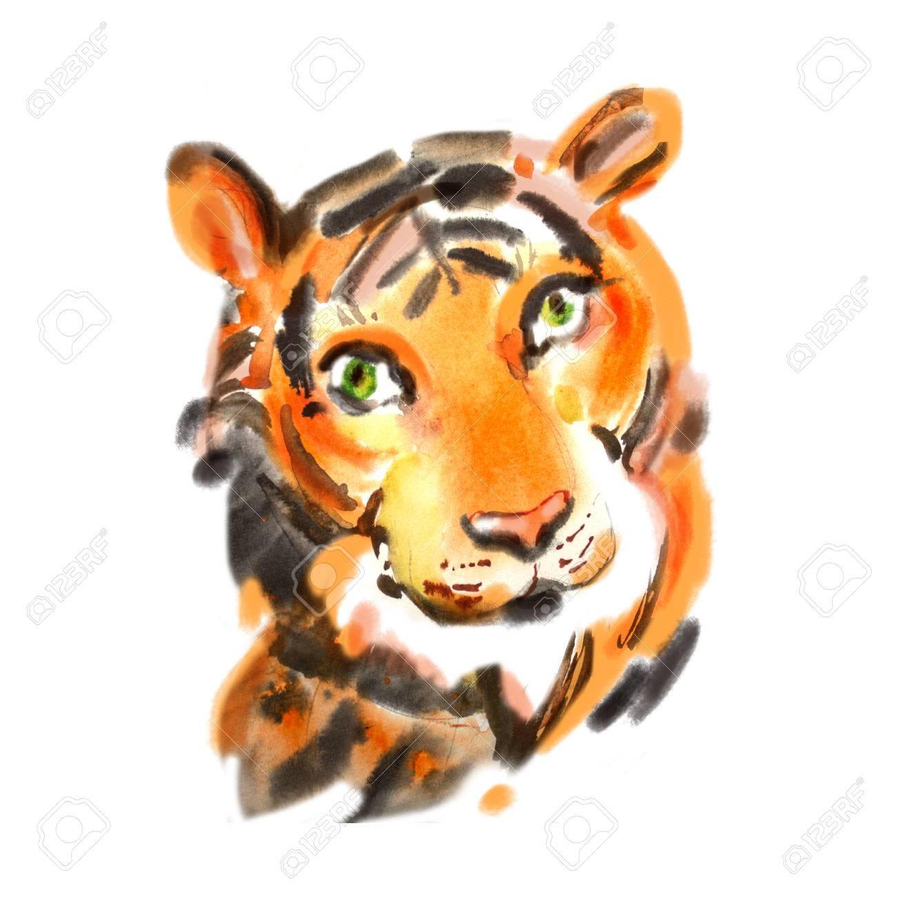 虎の肖像画に水彩を閉じます。手描きのイラスト。リアルな野生動物で描か