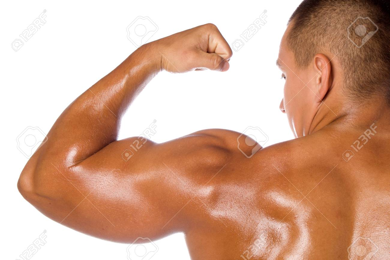 Muscled male model bodybuilder Stock Photo - 13801874