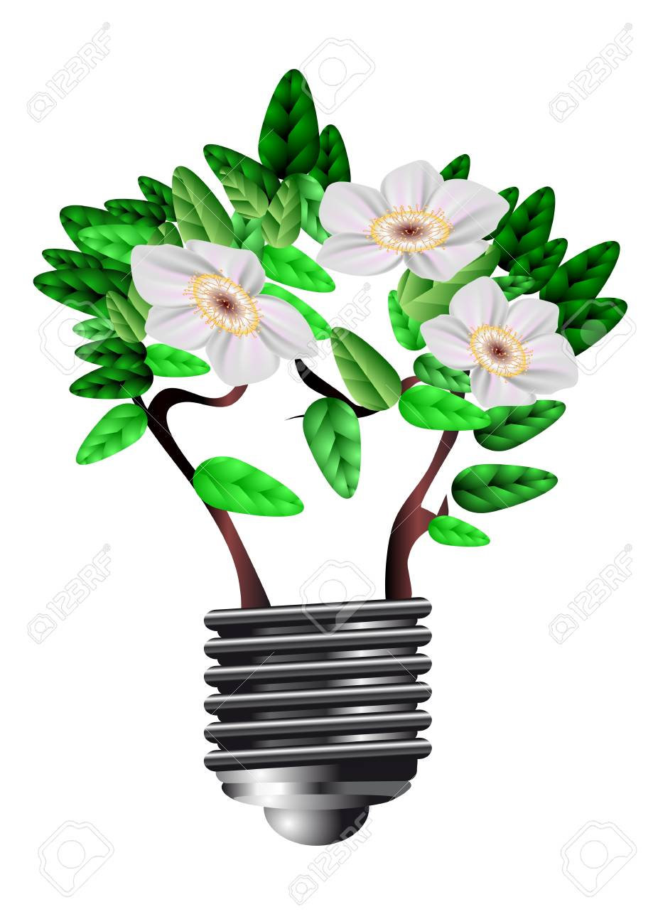 blooming bulb  symbol of conservation of energy Stock Vector - 17778813