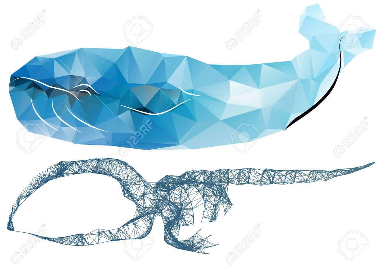 Whale Skeleton. Abstract Silhouettes Of Whale And Scheleton Royalty ...