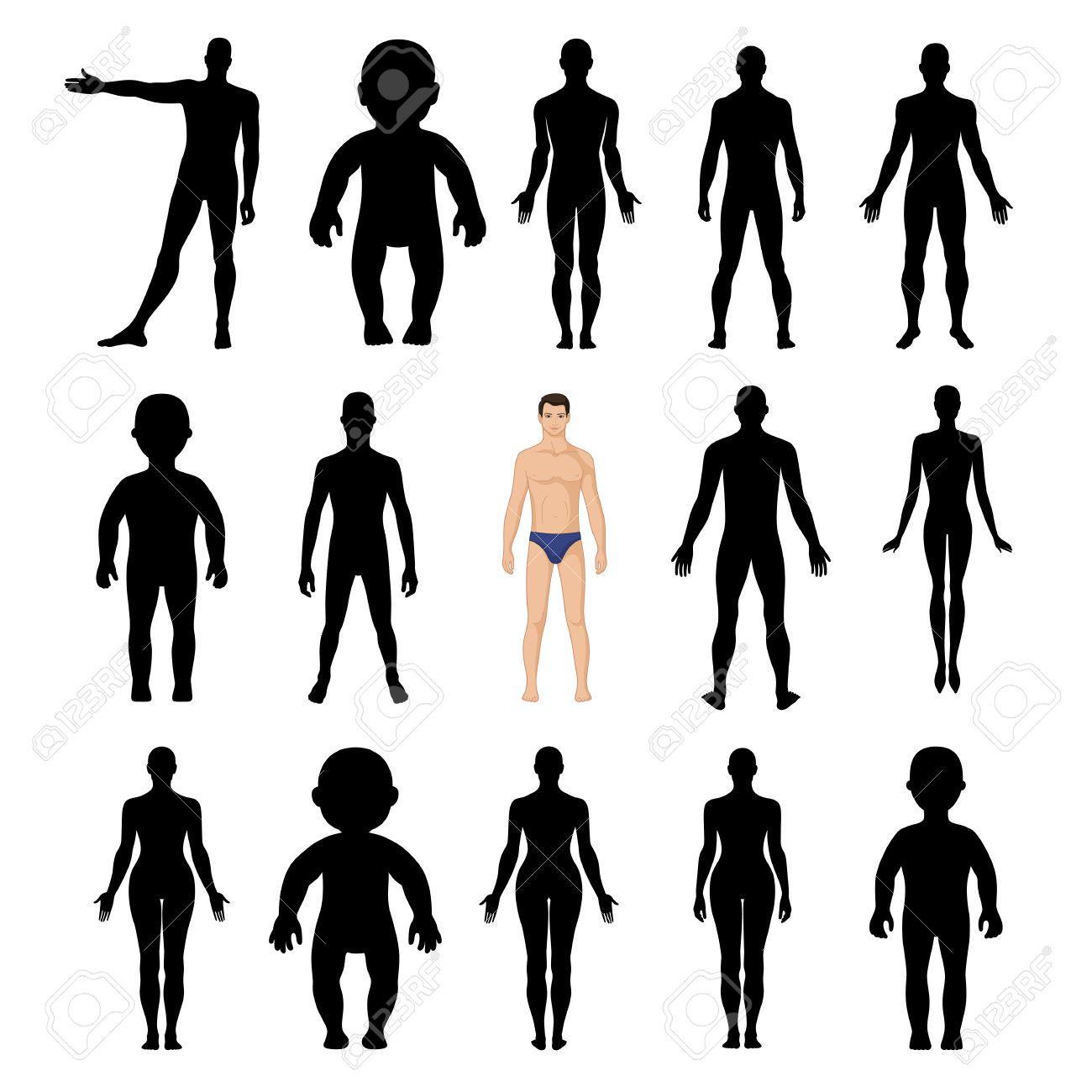 人物シルエット テンプレート図 (前面と背面)、ベクトル イラスト白背景