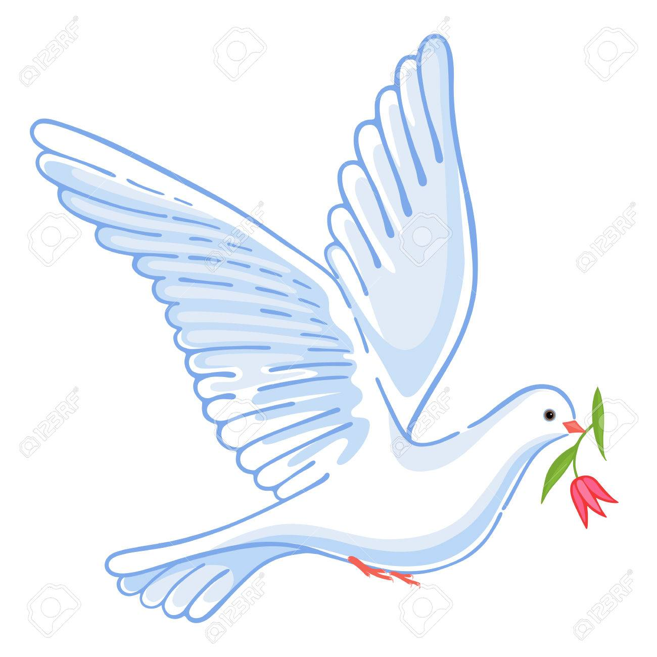 Soaring dove with flower, vector illustration isolated on background - 59125254