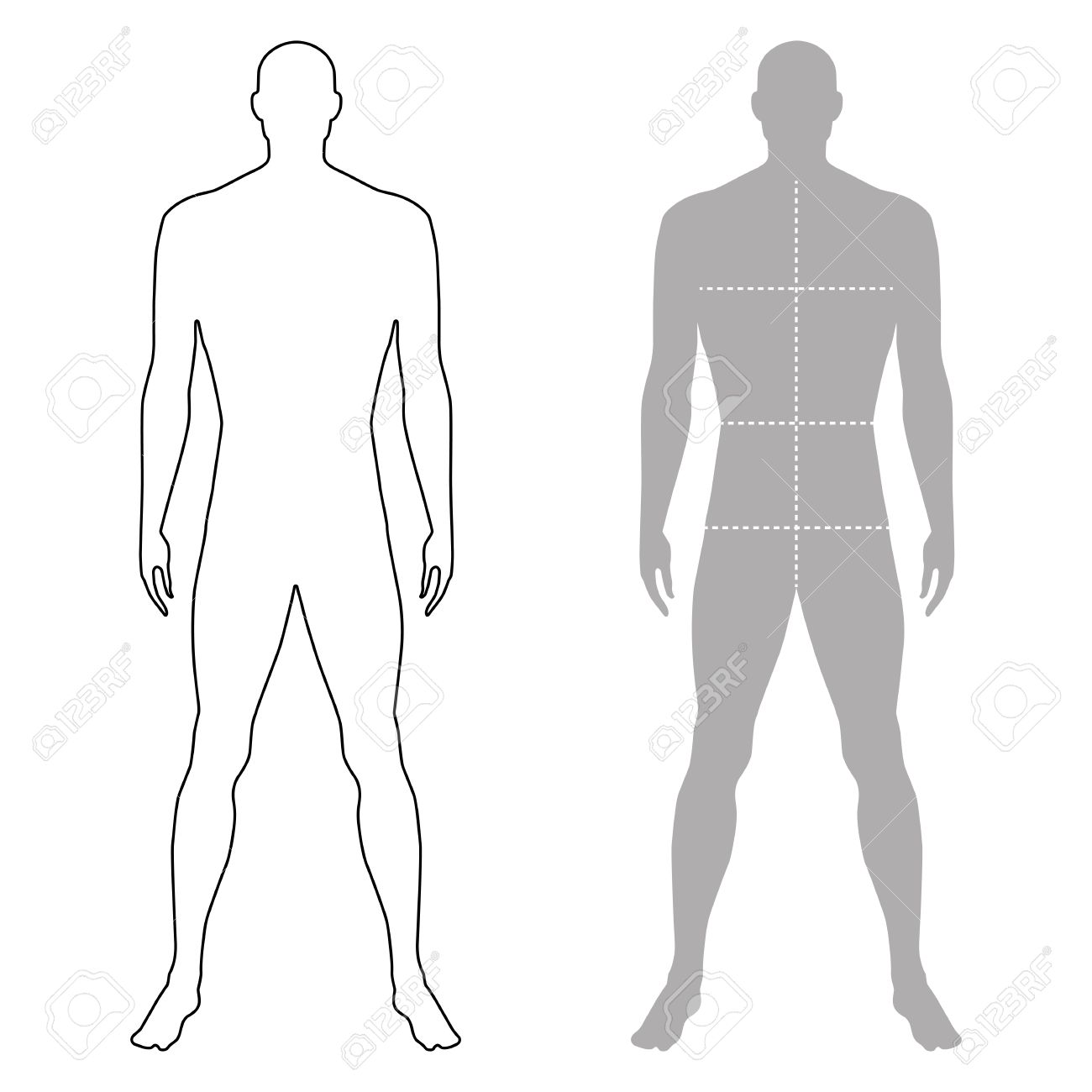 Fashion Man Full Length Outlined Template Figure Silhouette With Marked Bodys Sizes Lines Front View