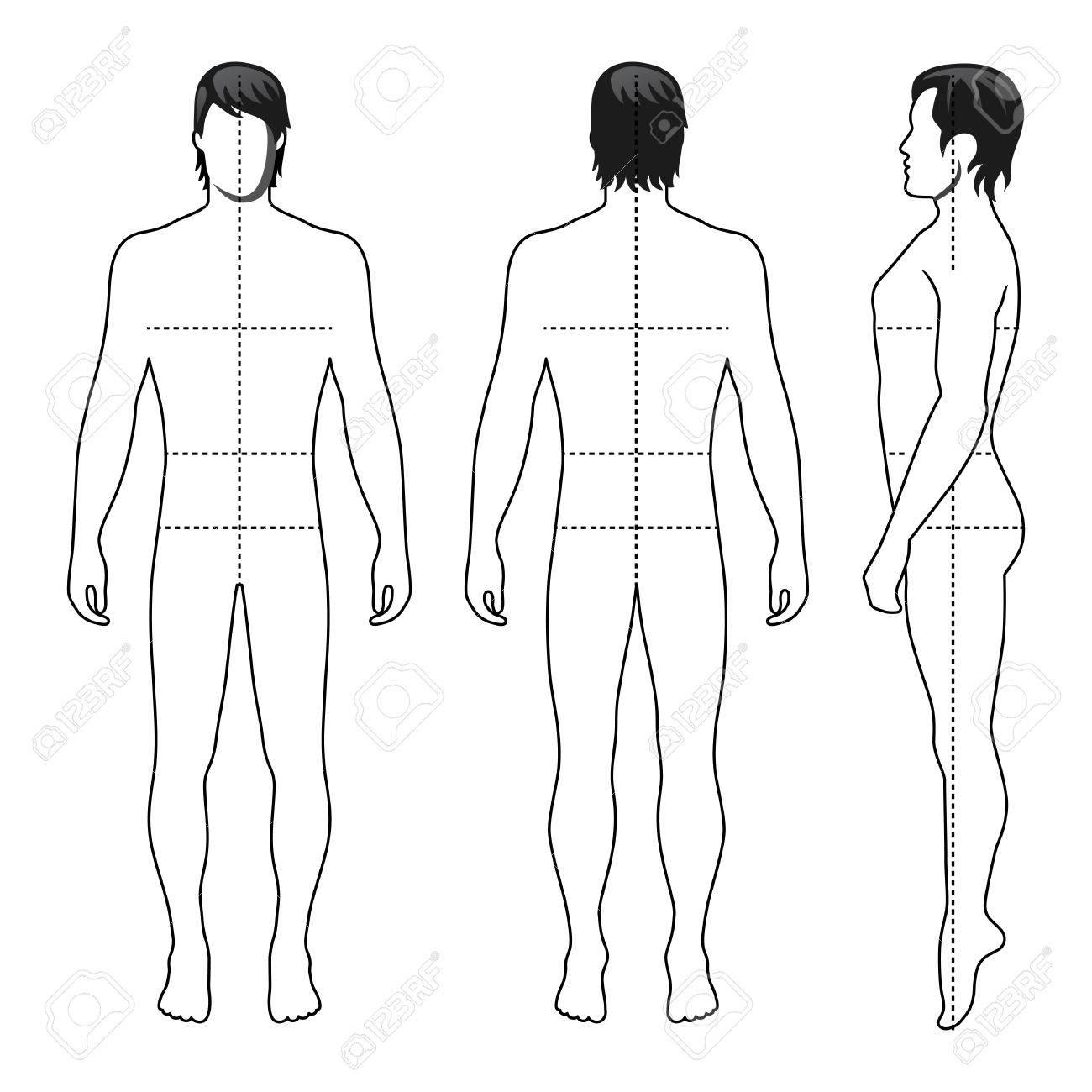 Großzügig Schicht Körper Vorlage Zeitgenössisch - Beispiel ...