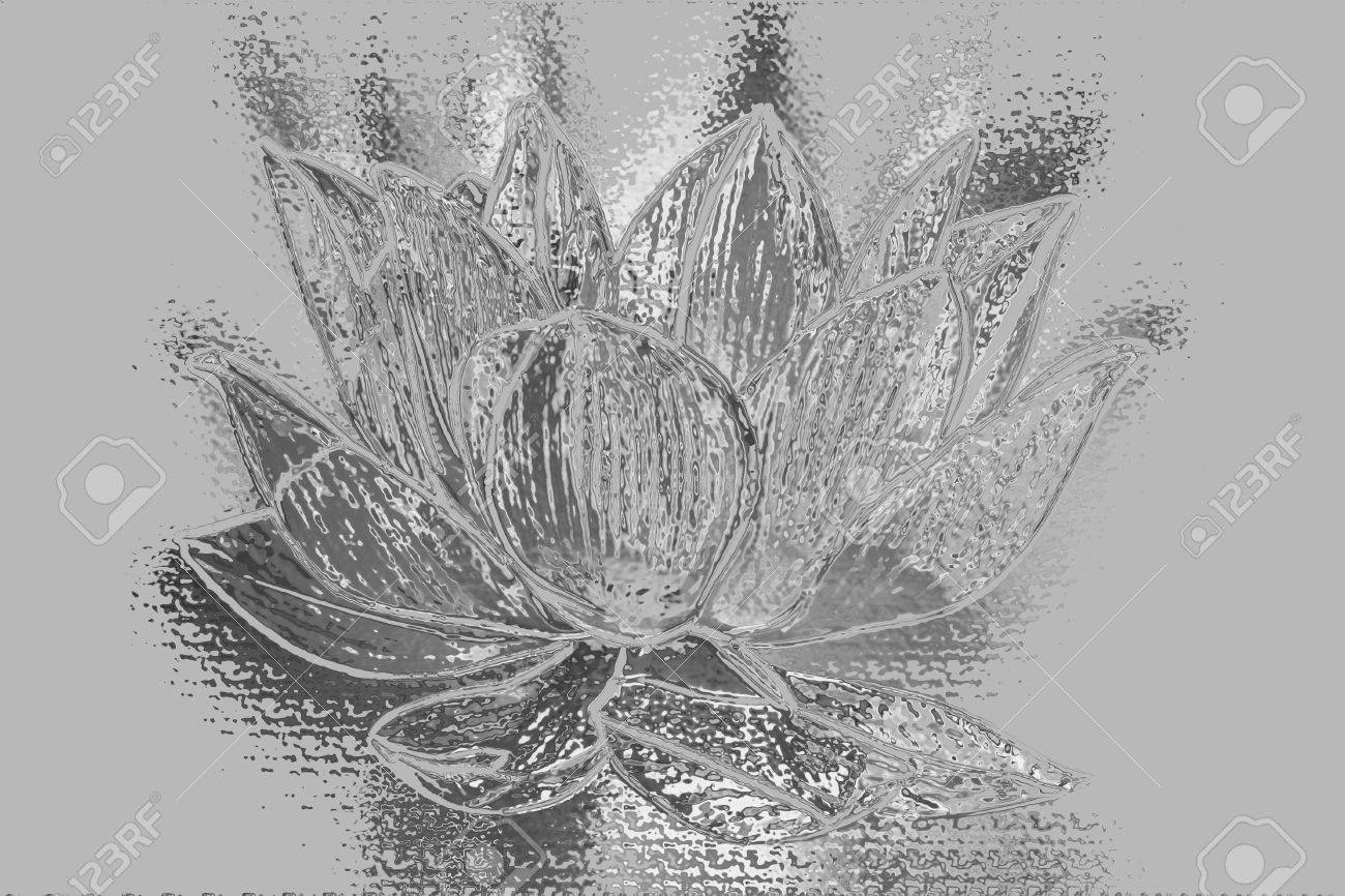 Artistic Silver Lotus Flower Graphism Stock Photo Picture And