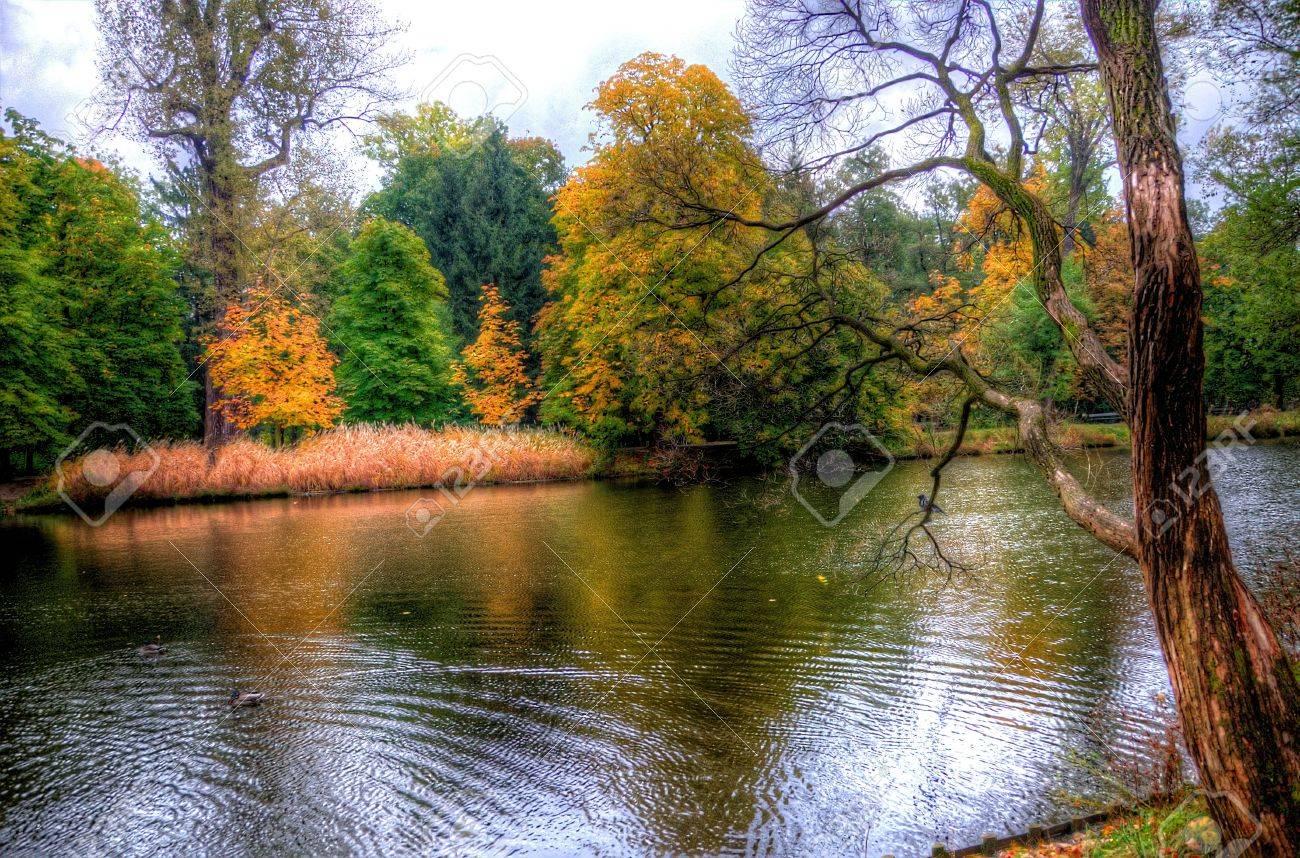 Herbst Bäume Im Lazienki Park Warschau Polen Lizenzfreie Fotos
