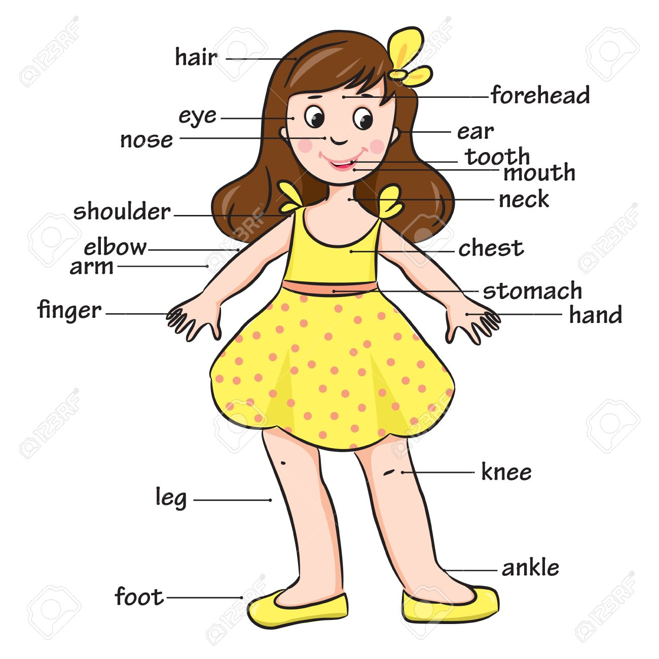 Body Parts Clipart For Kids - More information