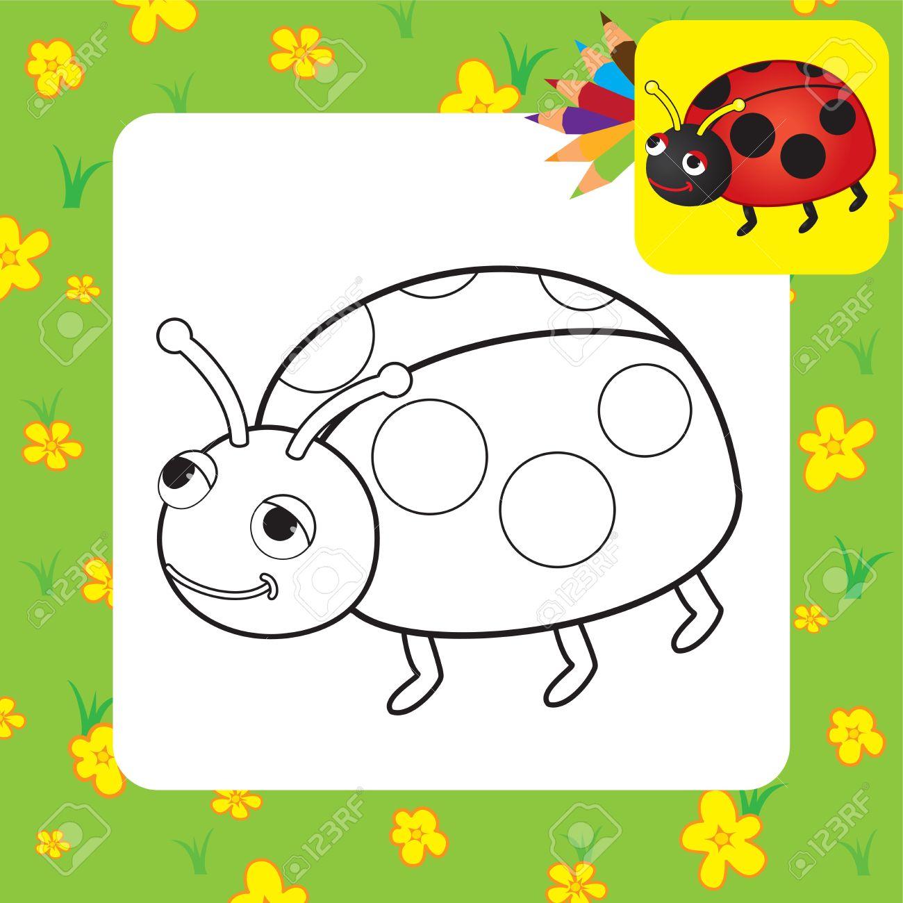 Dibujo Para Colorear Mariquita Ilustración Vectorial Ilustraciones