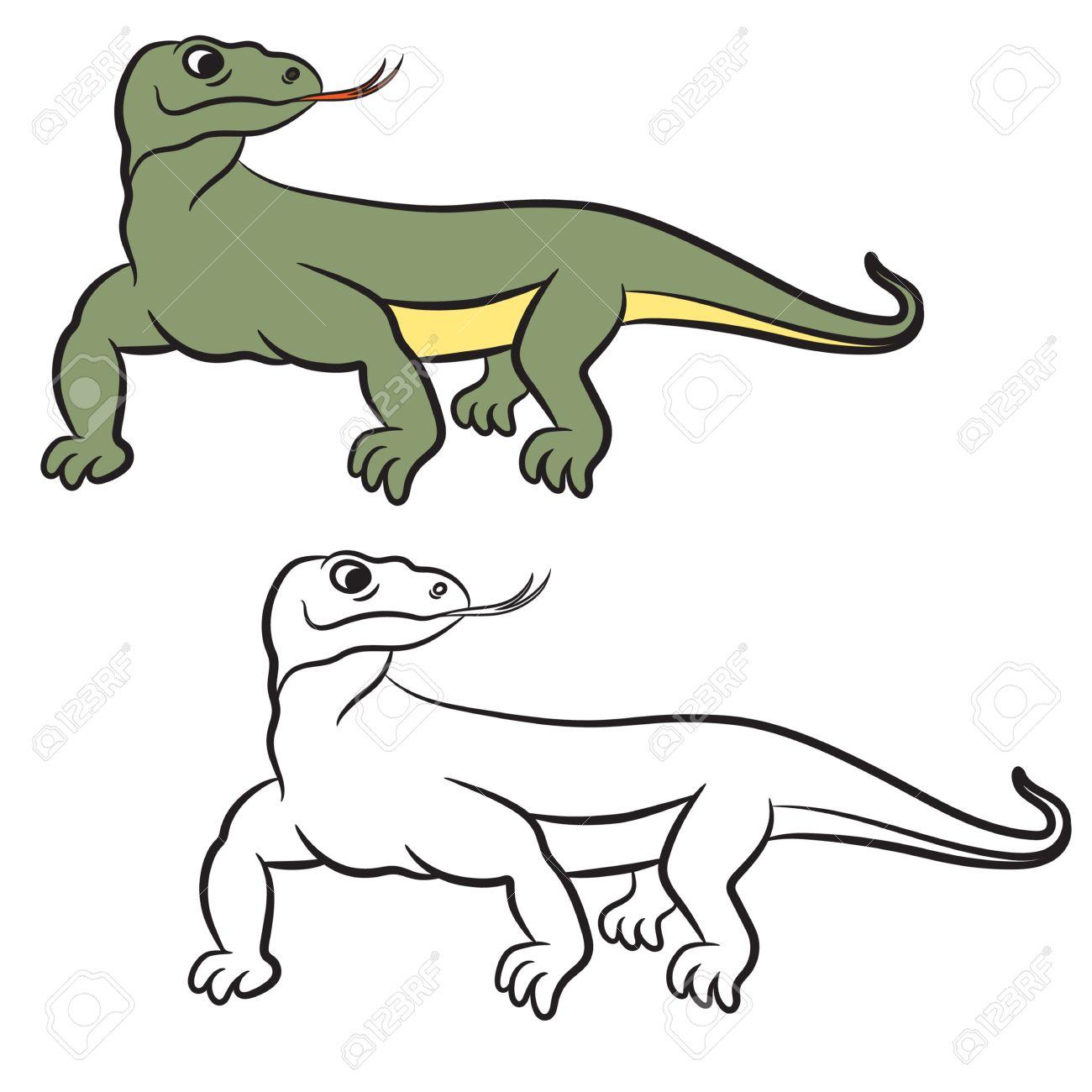Único Anatomía Dragón De Komodo Foto - Anatomía de Las Imágenesdel ...