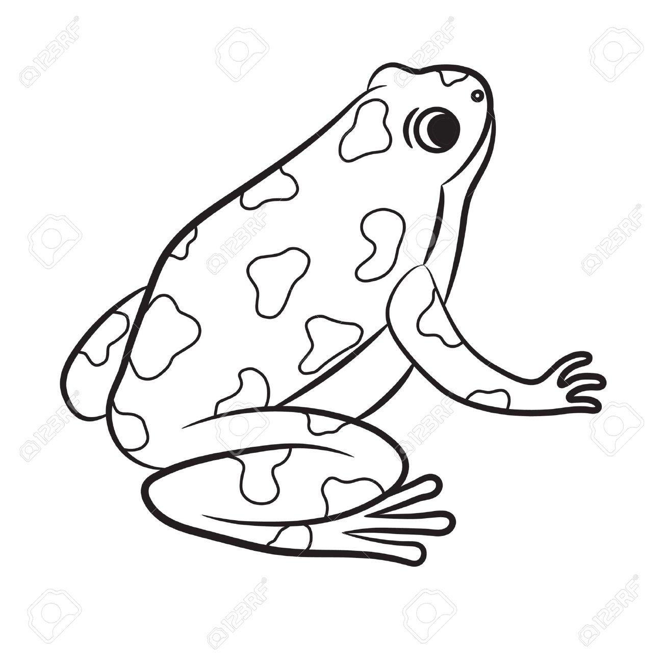 outlined poison dart frog vector royalty free cliparts vectors rh 123rf com Poison Dart Frog Drawing Golden Poison Dart Frog