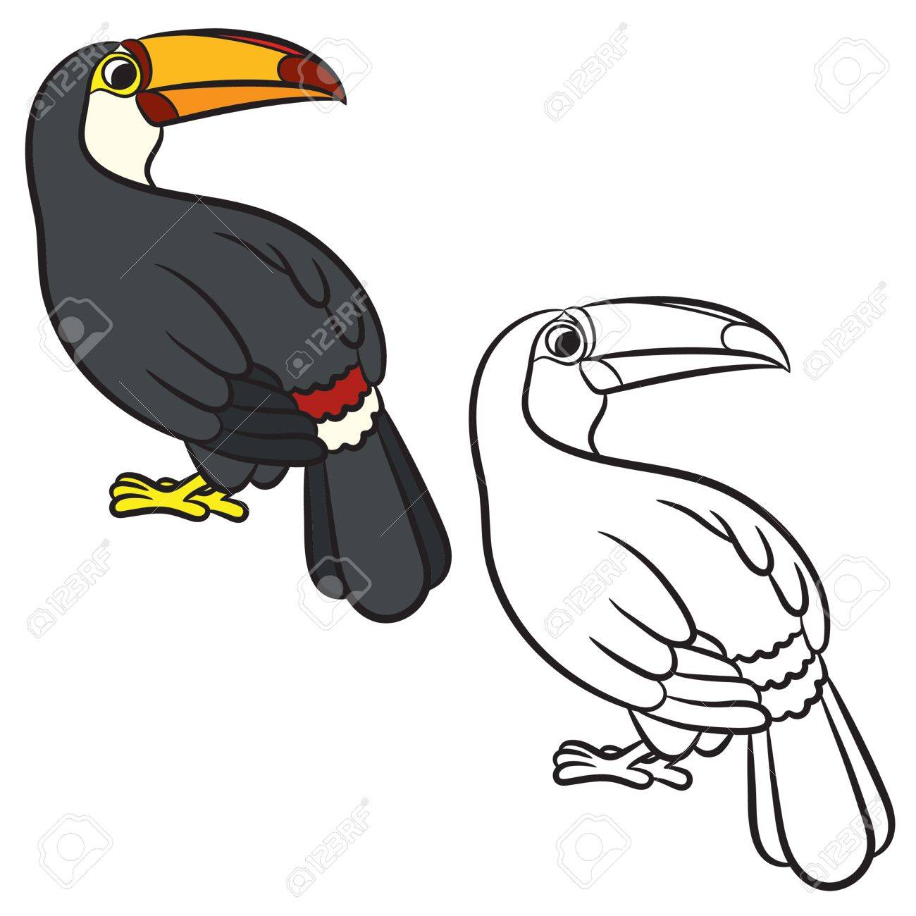 Toucan Coloring Pages - Best Coloring Pages For Kids | 1300x1300