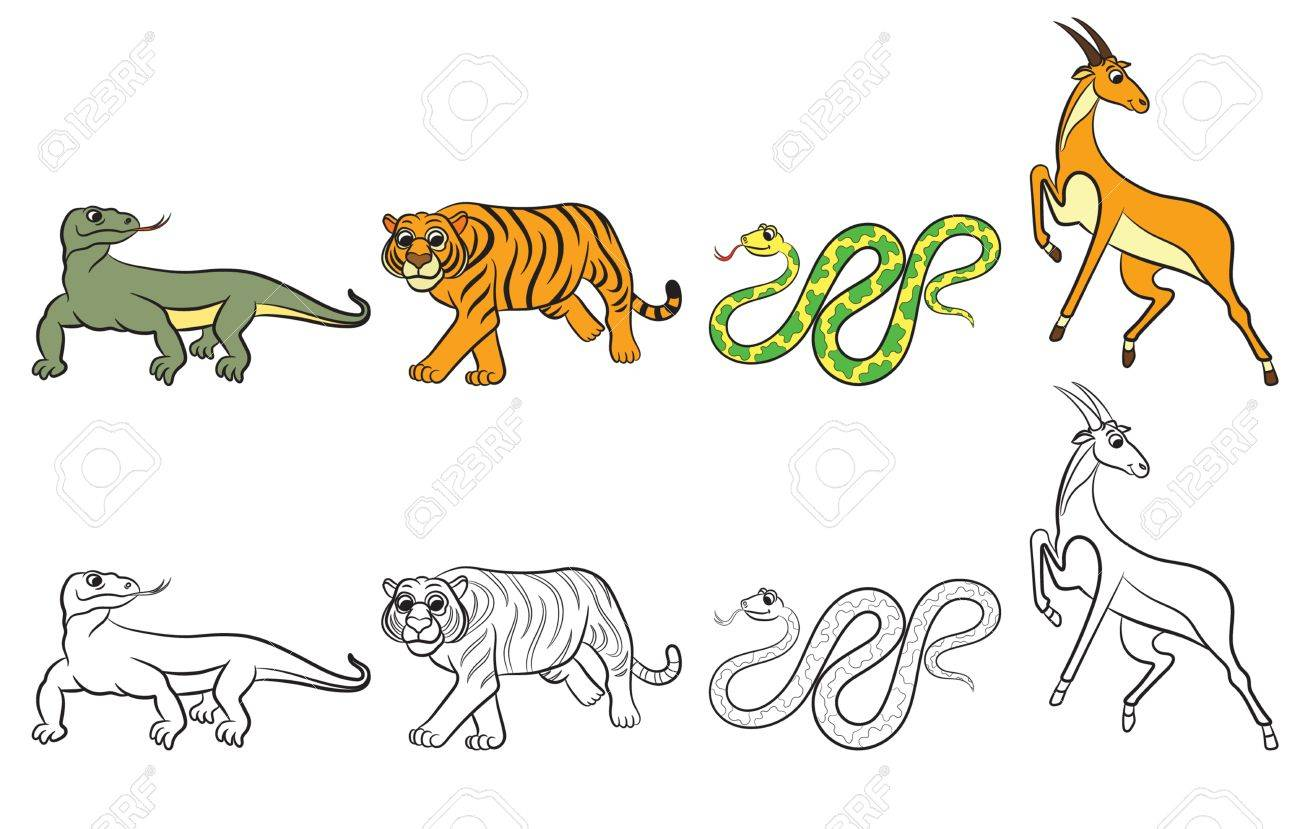 Cute Zoo Animals Collection Coloring Book Vector Illustration Stock