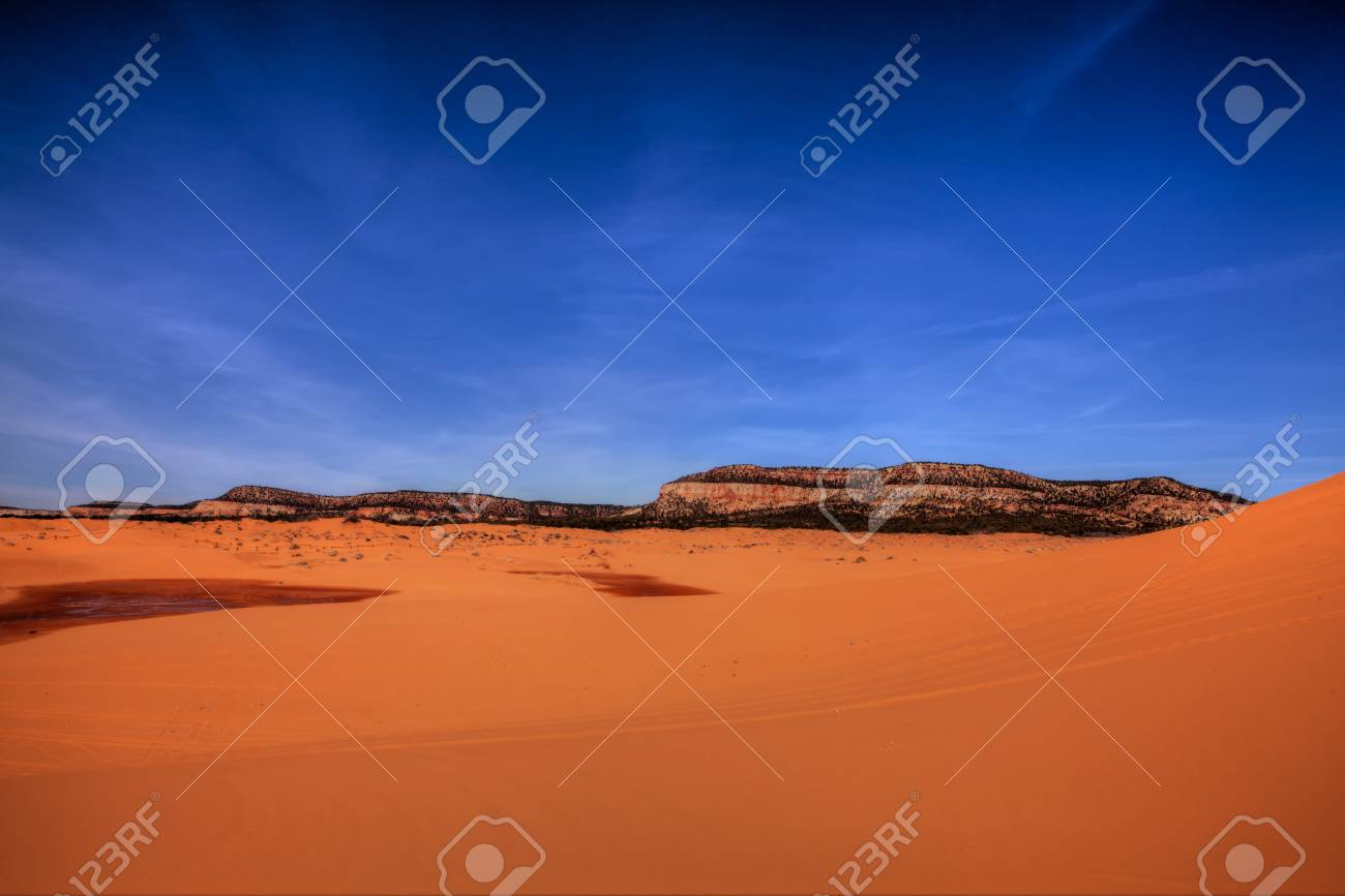 Coral Pink Sand Dunes State Park Stock Photo - 9424984