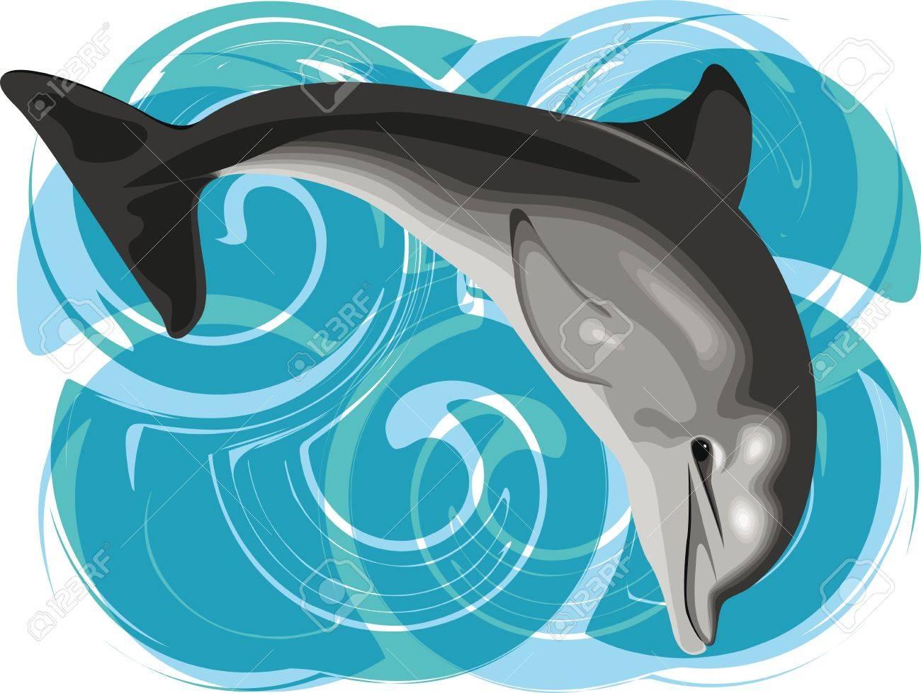 Dolphin vector illustration Stock Vector - 10889364