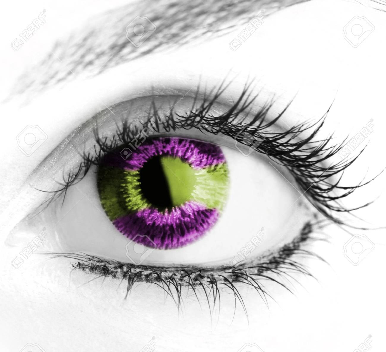 Great big eye. Macro. Stock Photo - 5577742