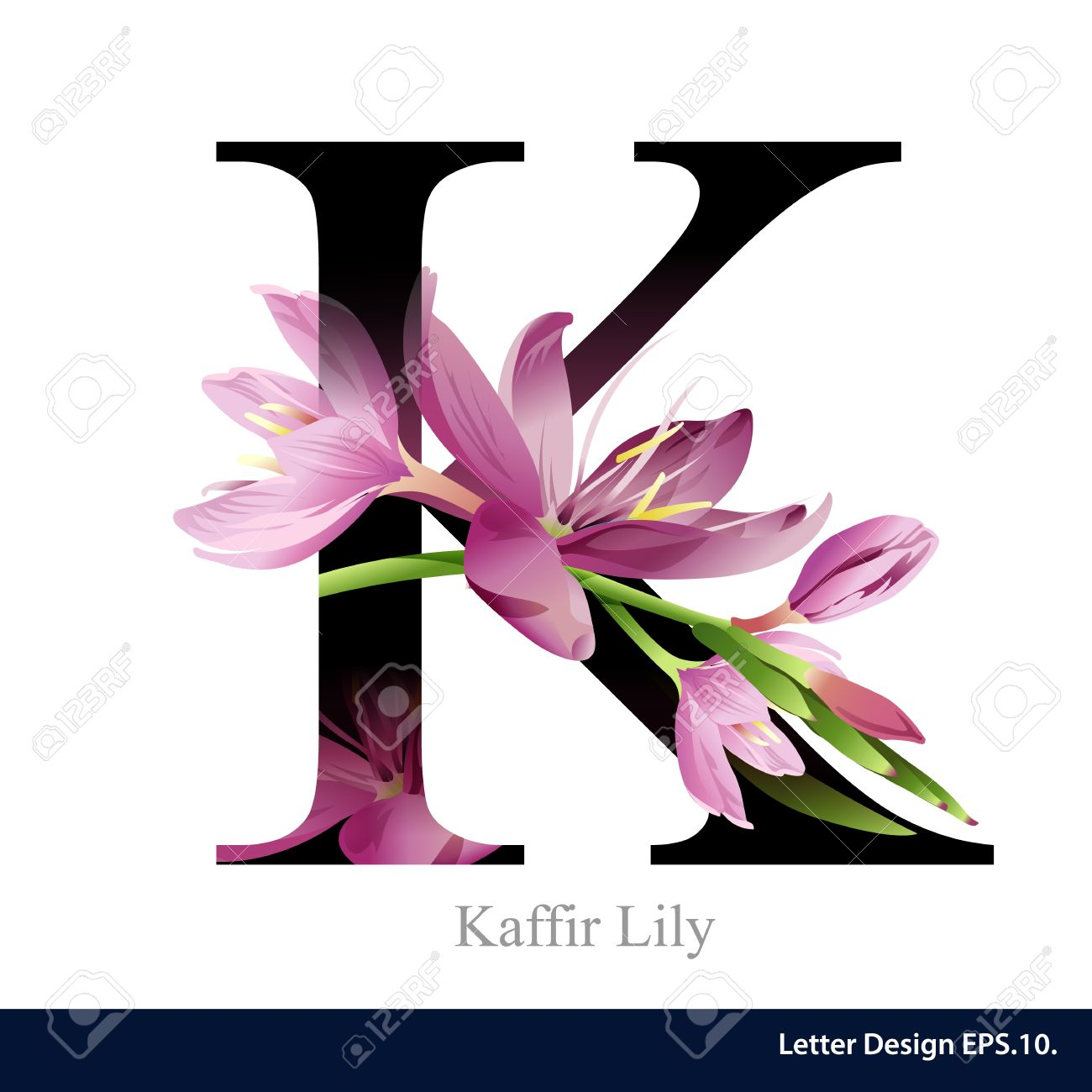 Letter K Stock Photos. Royalty Free Letter K Images