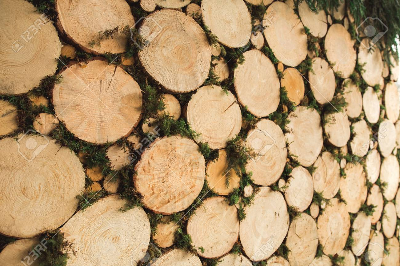 Surface Of Decorative Wall With Round Wood Logs And Green Moss ...
