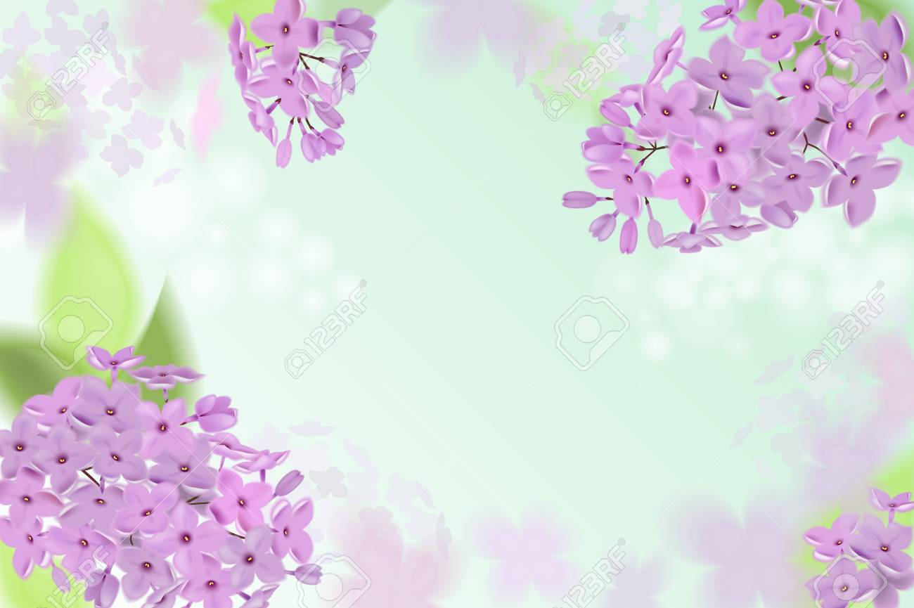 Spring background with pink and purple flowers of lilac can be used spring background with pink and purple flowers of lilac can be used for background mightylinksfo