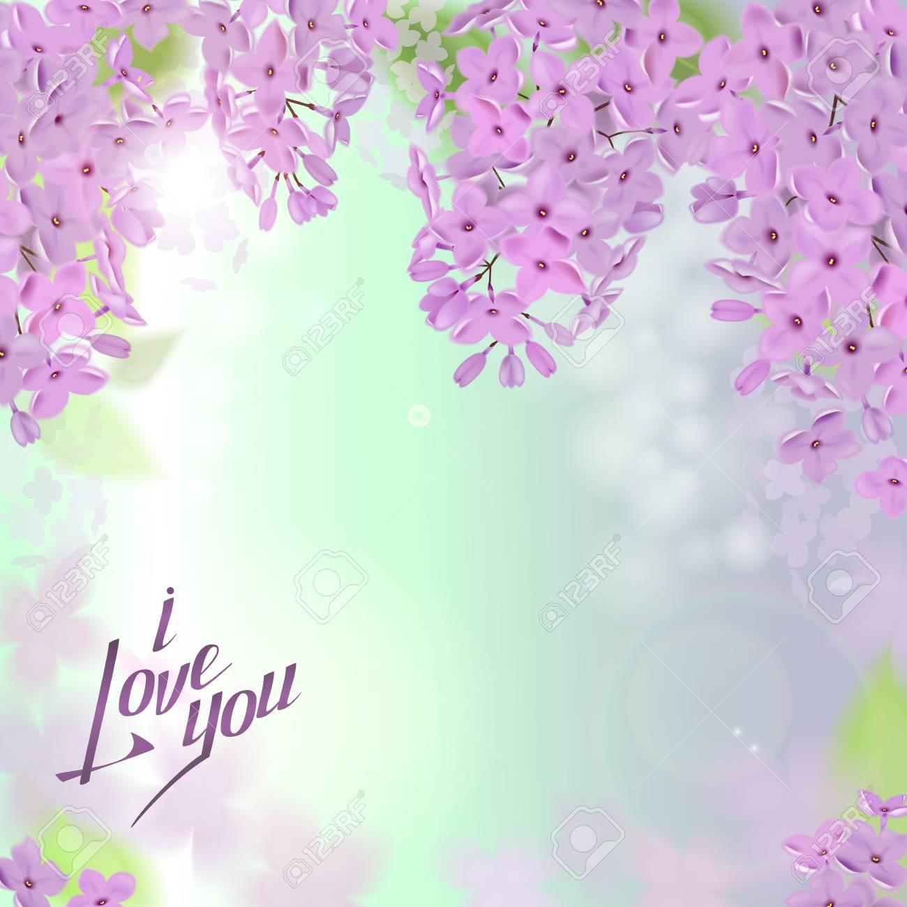 Fondo De Primavera Con Flores Rosas Y Purpuras De Lila Se Puede