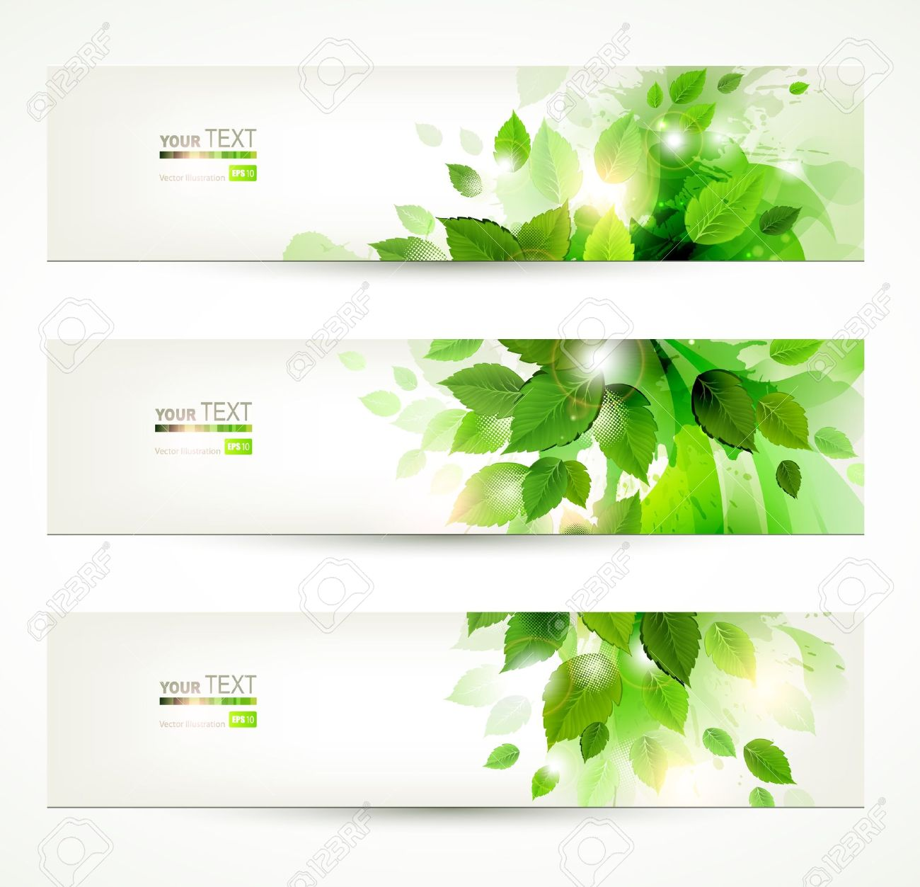 set of three banners with fresh green leaves - 13750814