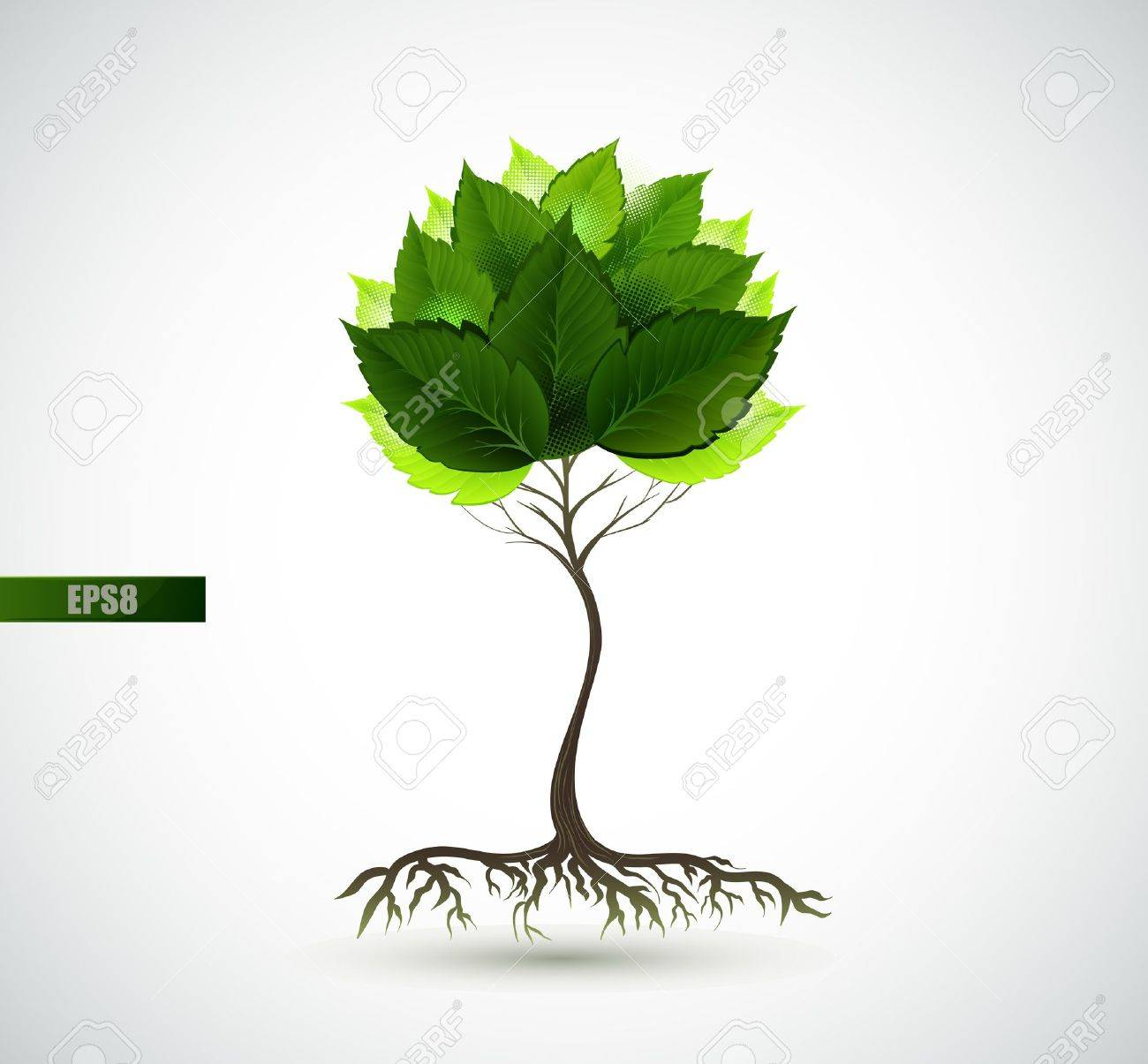 Season young tree with green leaves Stock Vector - 14548541