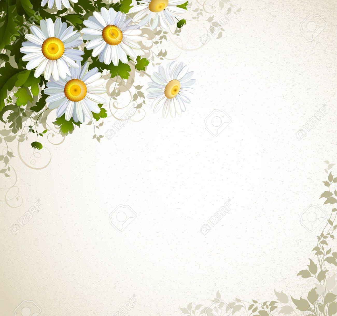 postal with a realistic chamomile on the beige background - 15339414