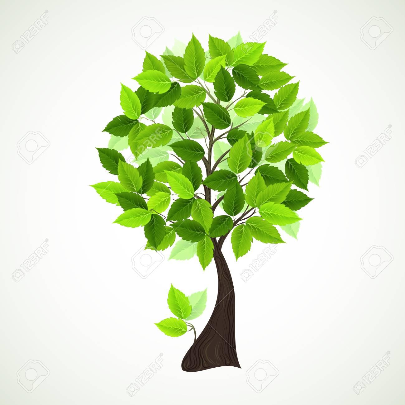 temporada árbol con hojas verdes ilustraciones vectoriales clip art