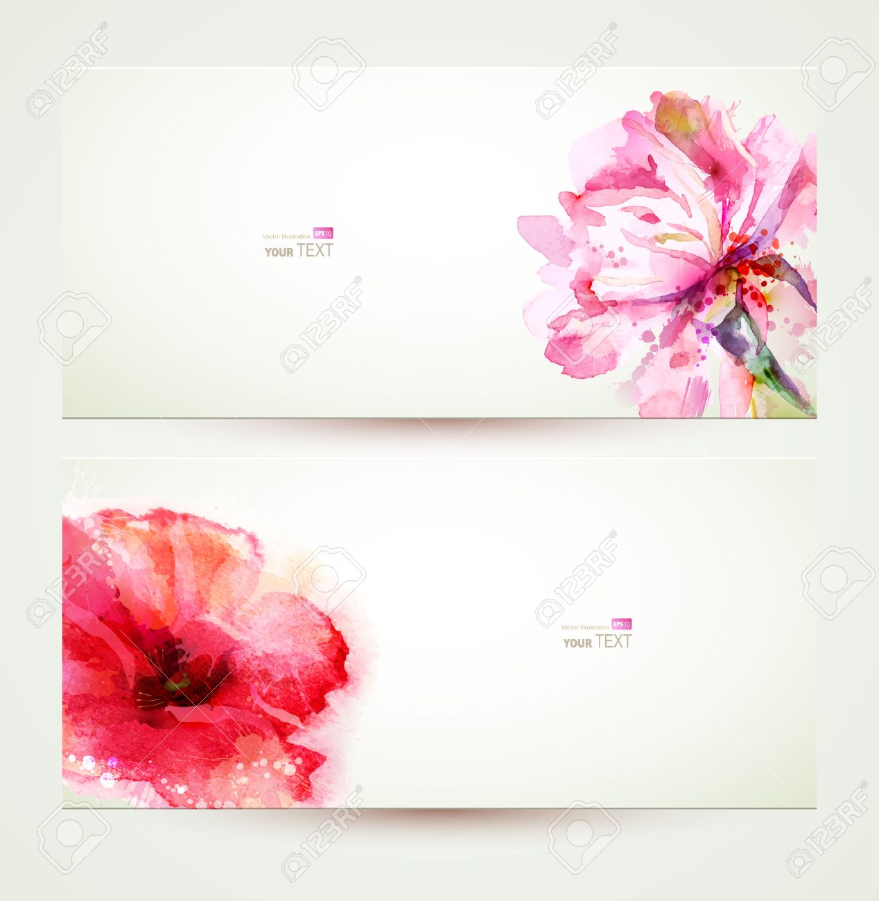 Two banners of flowering pink peony and poppy. Stock Vector - 39043937