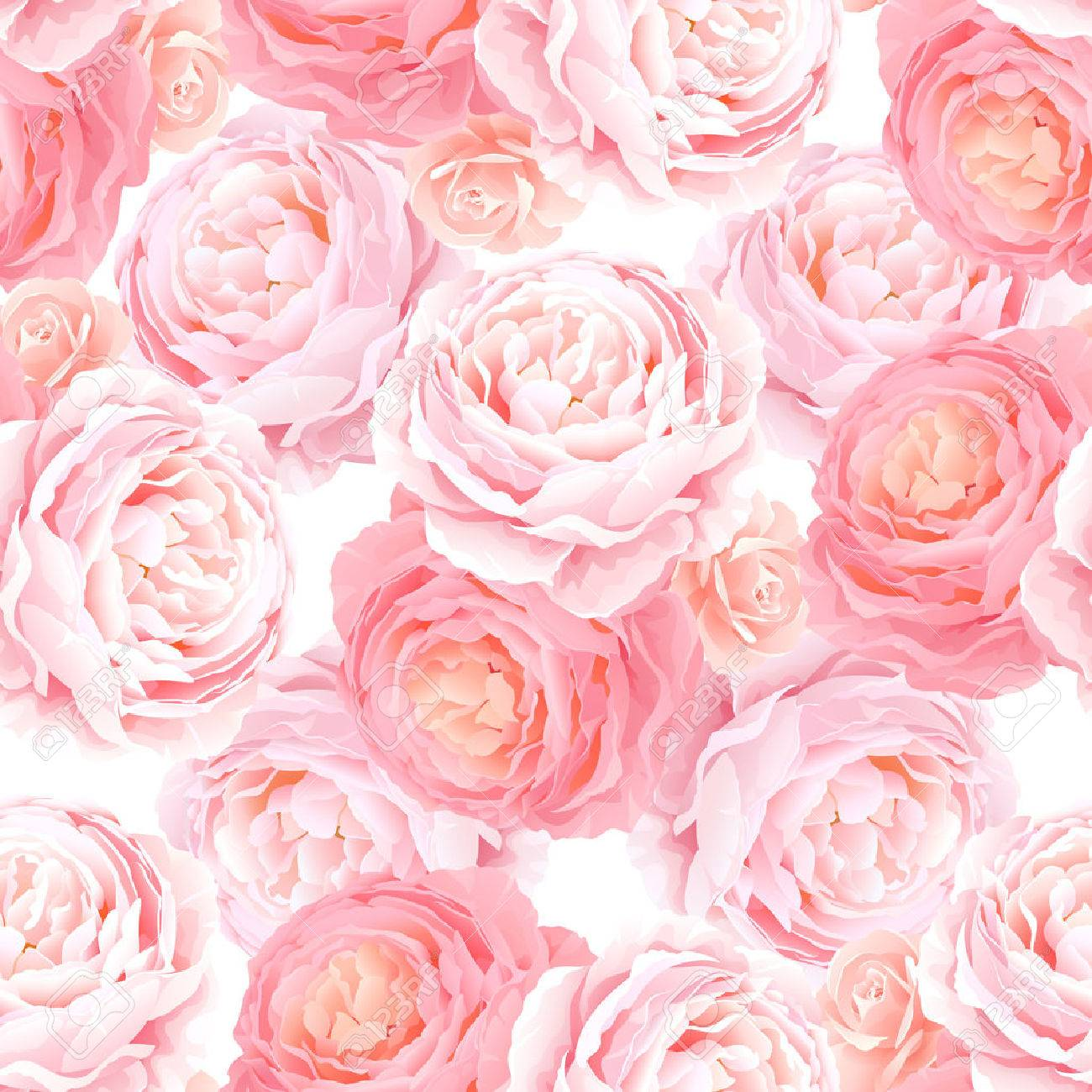 Seamless Pattern With Elegance Color Pink Roses Natural Floral