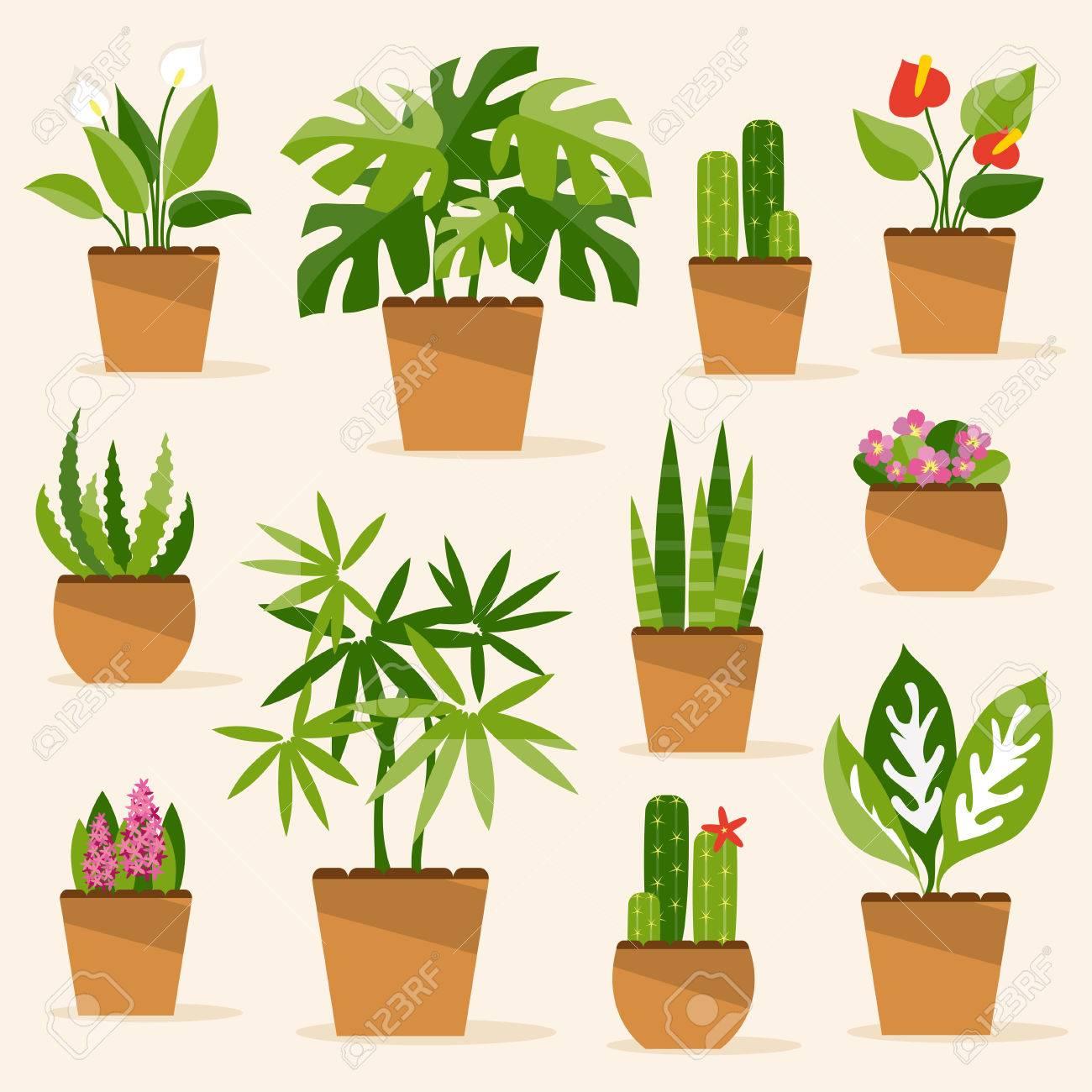 Una Colección De Plantas Y Flores De Interior Ilustraciones
