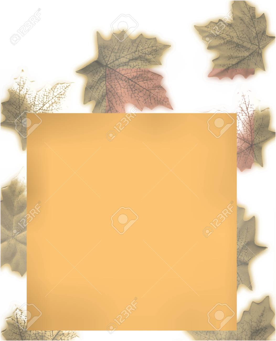 Autumn Leaves Stock Photo - 1877136