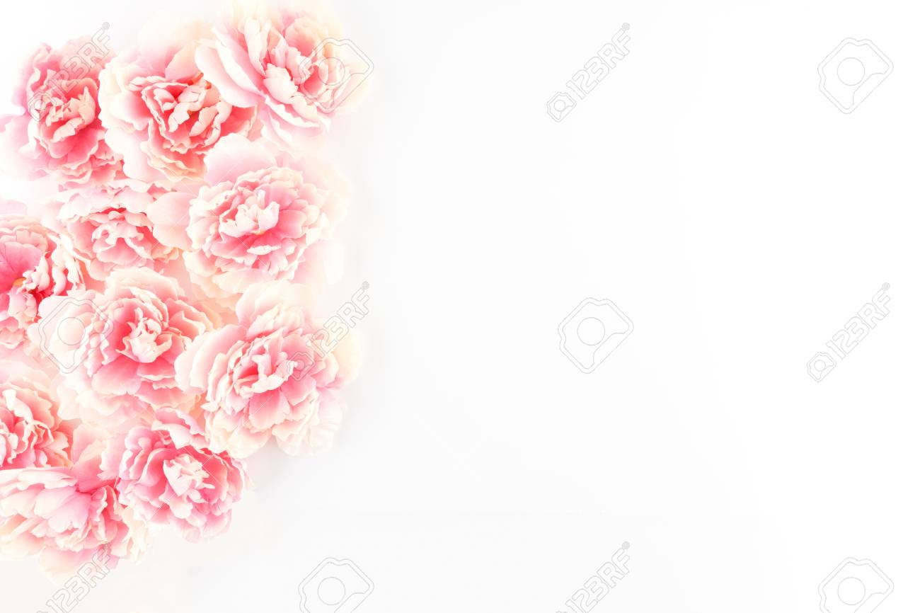 Pink Peony Flowers Cascading On A White Styled Desktop Silk