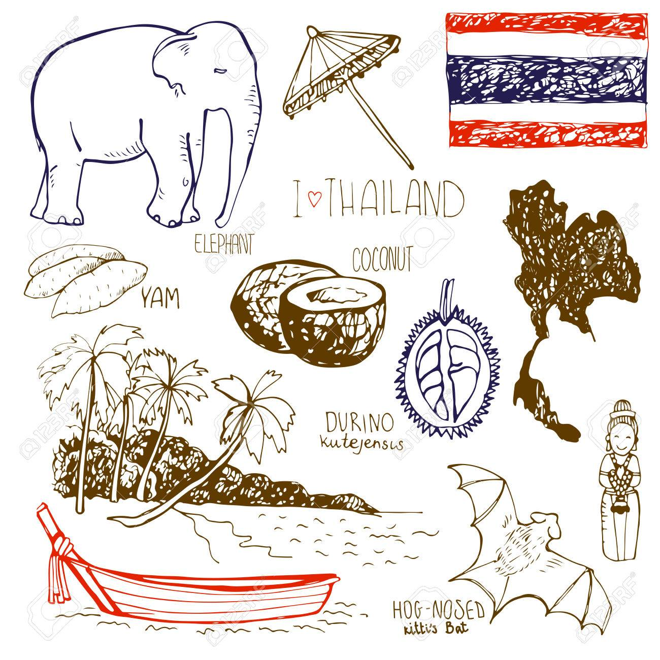 Hand drawn symbols of thailand with yam elefant durino hog hand drawn symbols of thailand with yam elefant durino hog nosed kittis biocorpaavc
