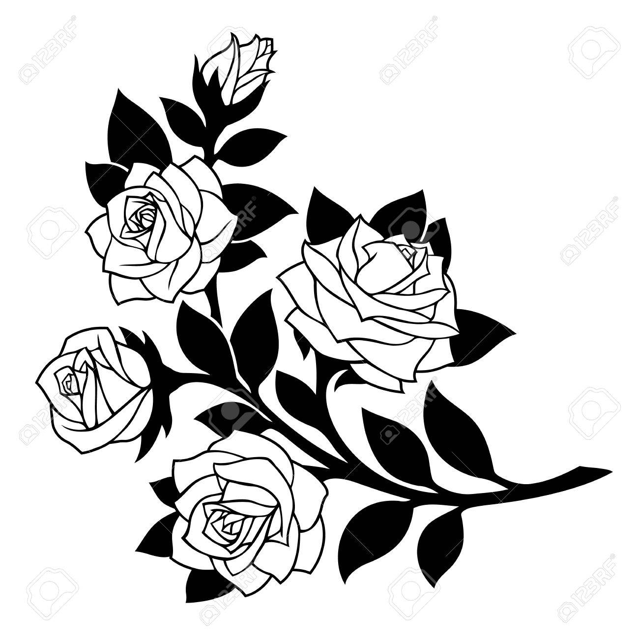 ce6041c3f Vector - vector illustration, decoration element, black rose branch with  white flowers