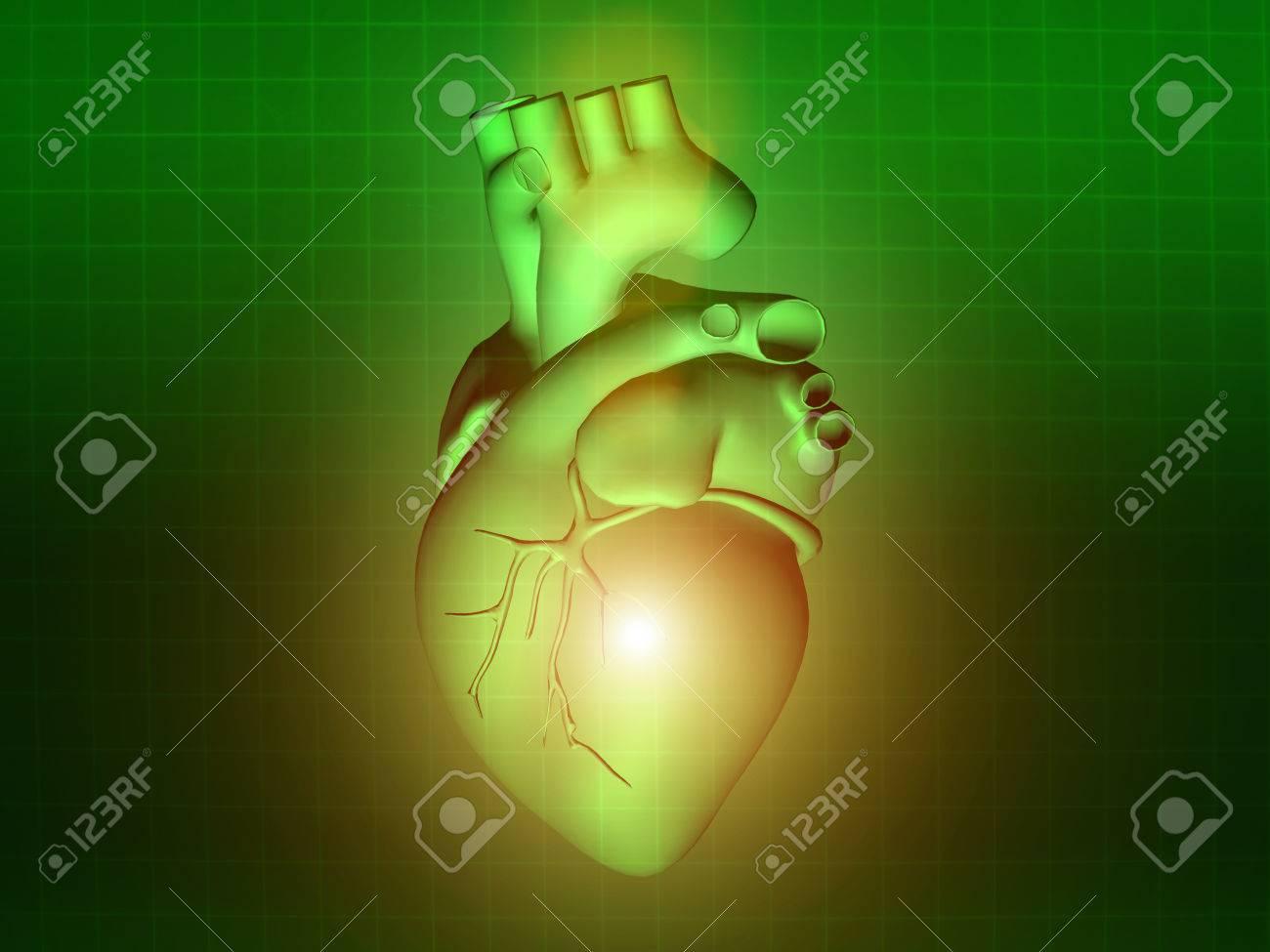 Heart Disease 3d Anatomy Illustration Health Green Stock Photo ...