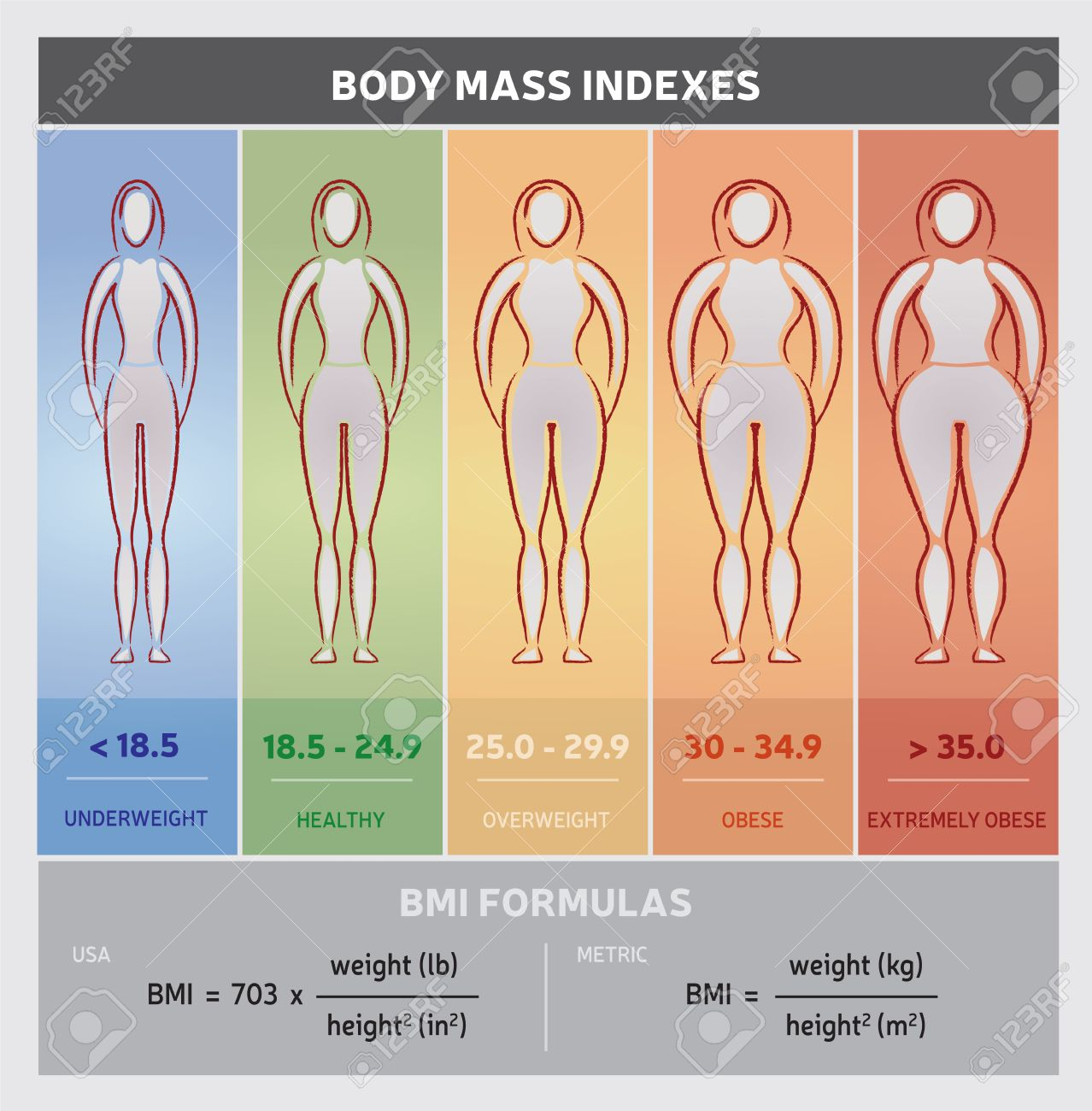 Body mass index diagram graphical chart with body silhouettes body mass index diagram graphical chart with body silhouettes five classes and formulas stock vector nvjuhfo Gallery