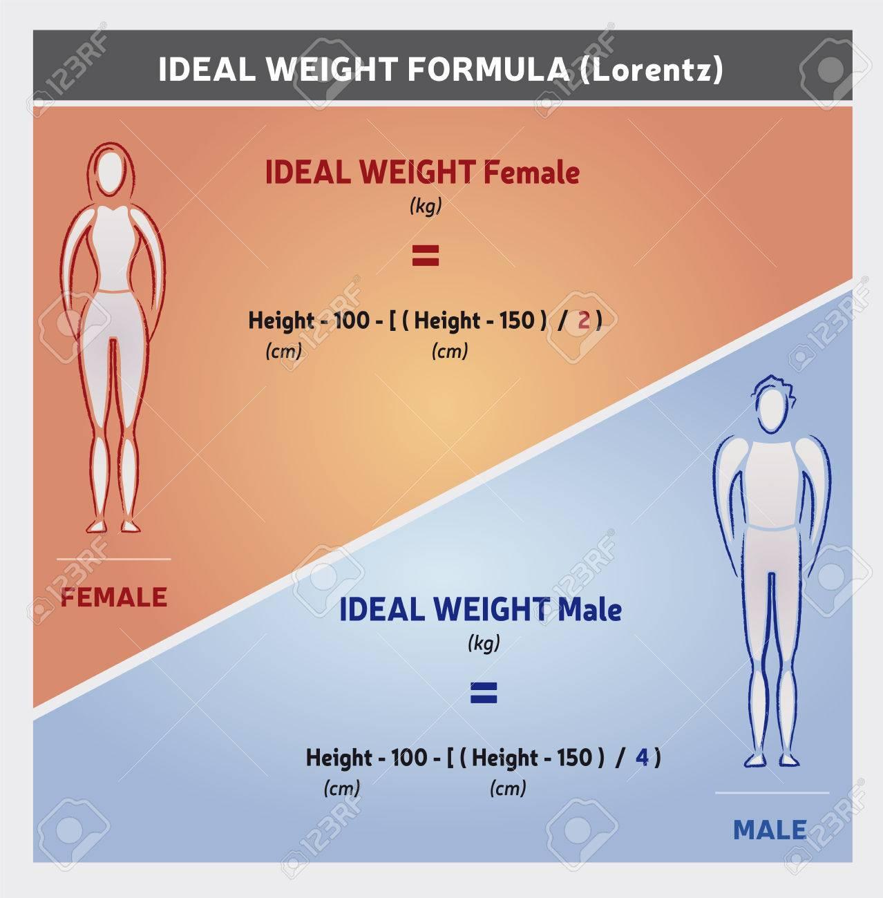 Ilustración De Fórmula De Peso Ideal - Siluetas De Mujeres Y Hombres ...