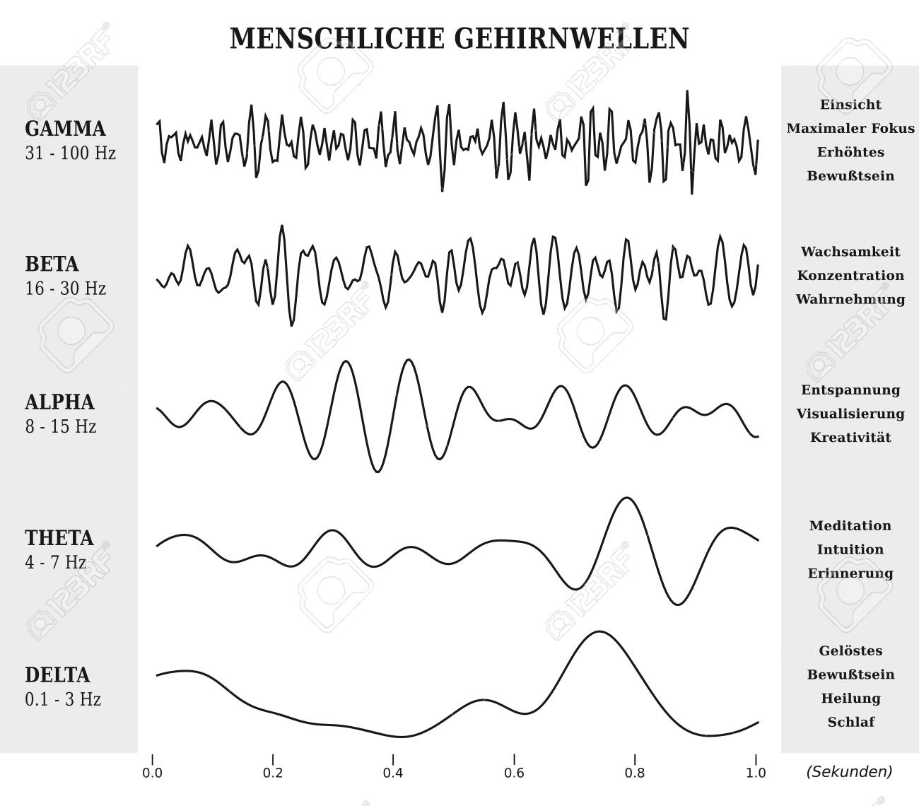 human brain waves diagram / chart / illustration in german - black and  white stock vector