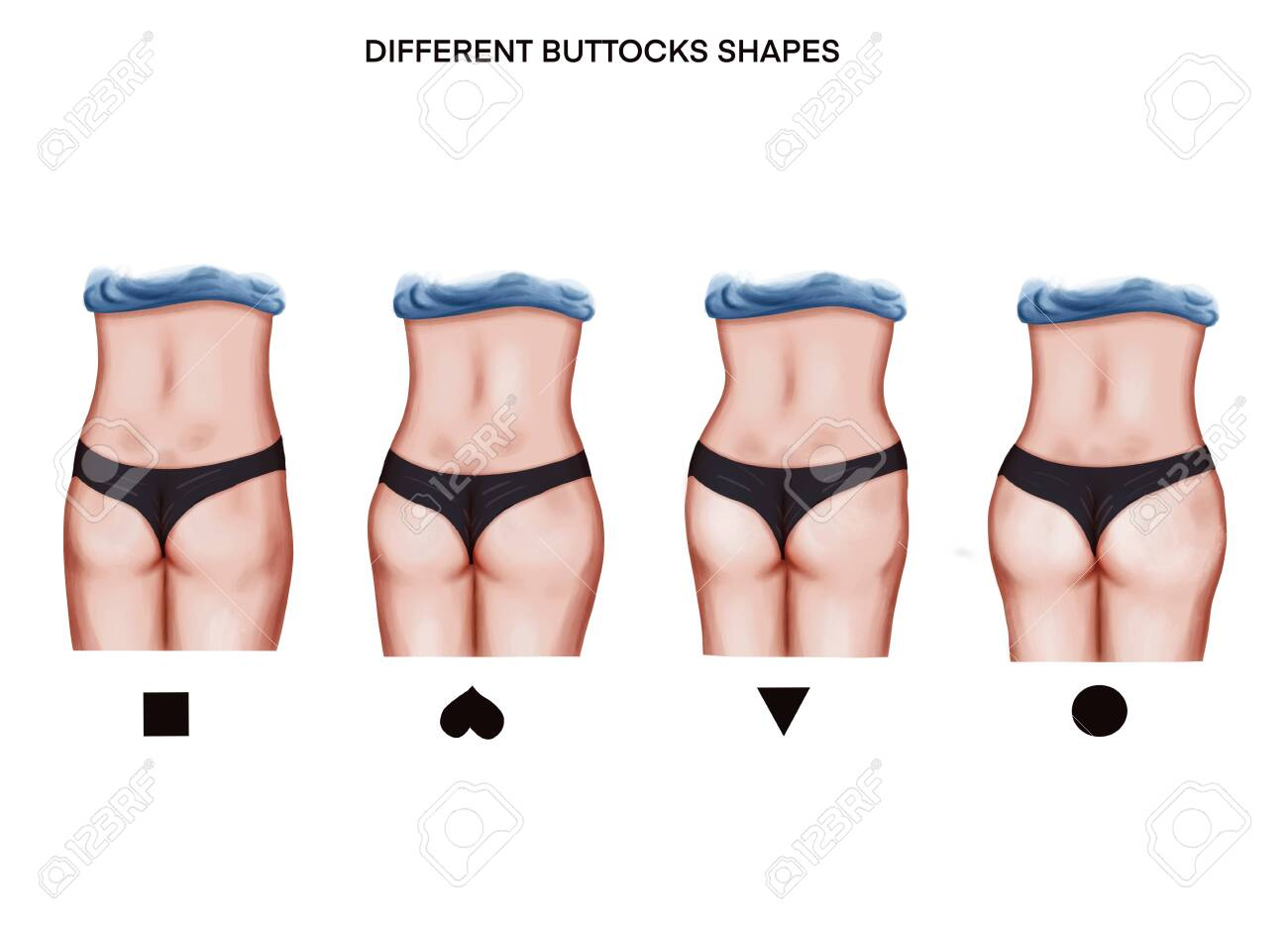Illustration of the different buttoks shapes - 140533564