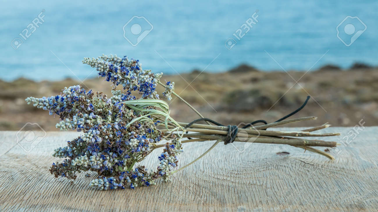 Beautiful Greek wild lavender on the background of the sea on natural wooden background. Copy space for text. Aromatherapy and essential oil concept. Space for you product. - 152914517