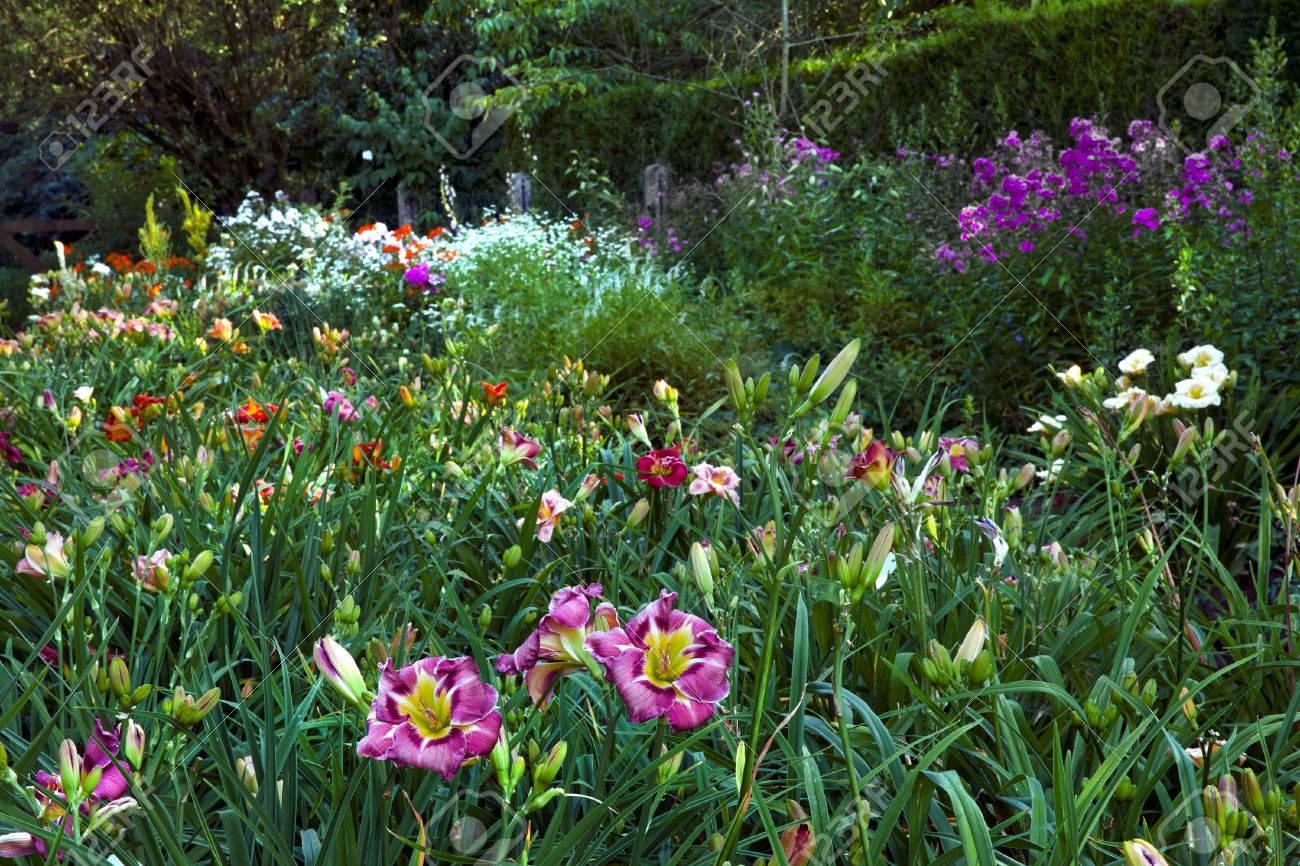 Bunte Landschaft Formalen Garten. Schöner Garten. Standard Bild   23911784