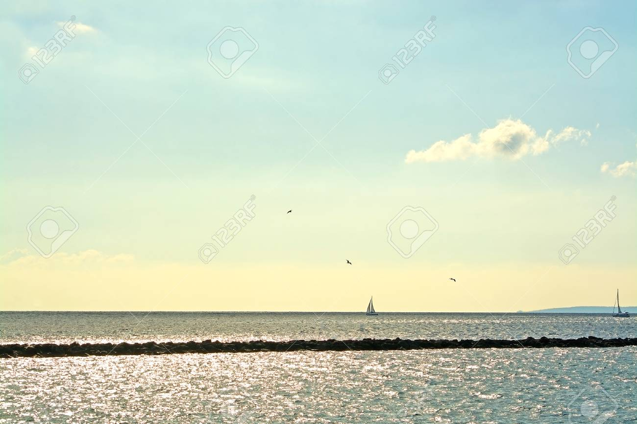 maritime inlet with birds ocean horizon pier and sailboat in