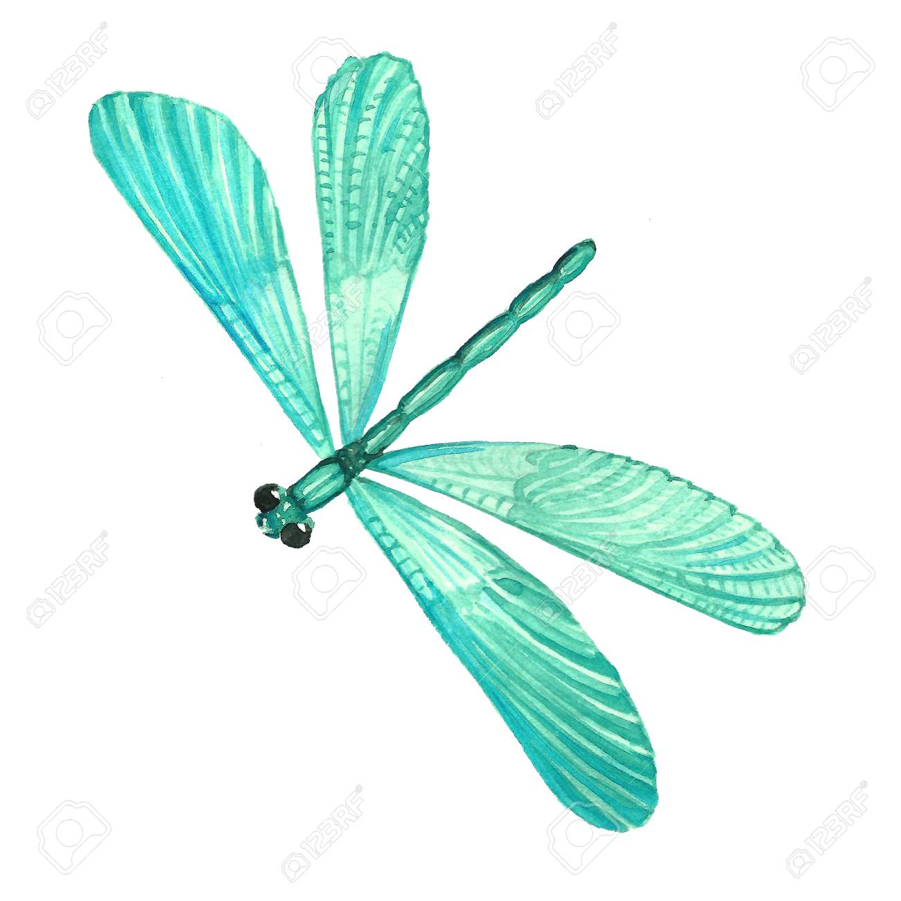 Watercolor image of a dragonfly on a white background isolated watercolor image of a dragonfly on a white background isolated insect pattern with wings biocorpaavc