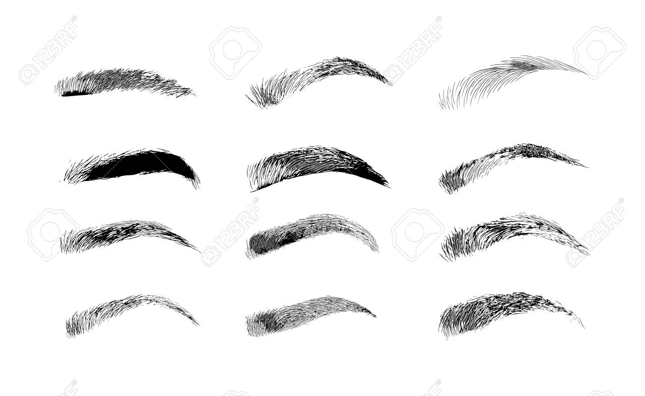 Eyebrow shapes  Various types of eyebrows  Classic type and other