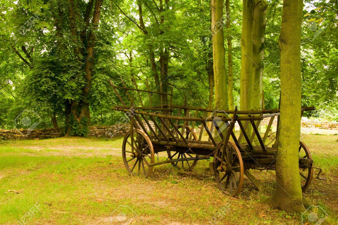 a medieval cart on the Kemenade Orlamuende Stock Photo - 18305081