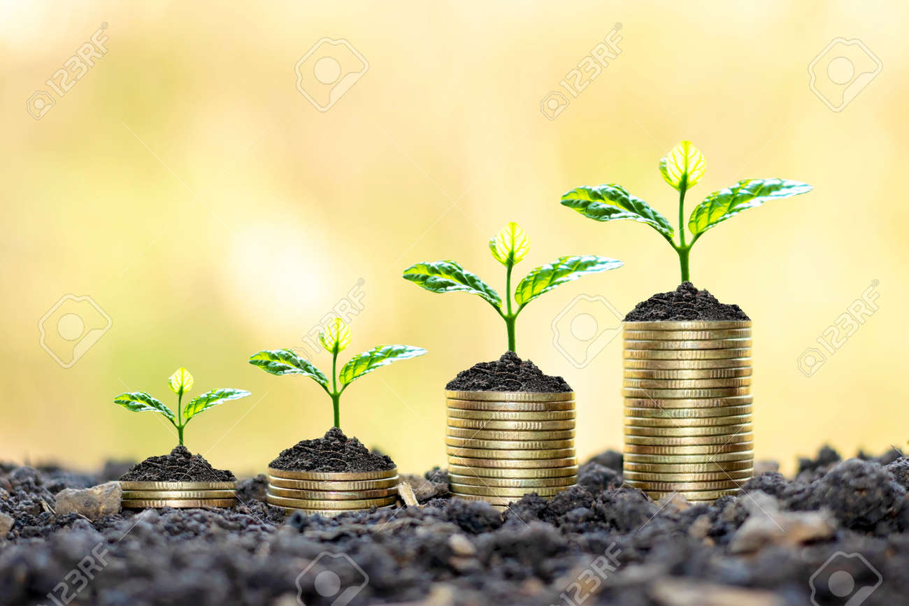 Growing plants on coins stacked on green blurred - 158398675