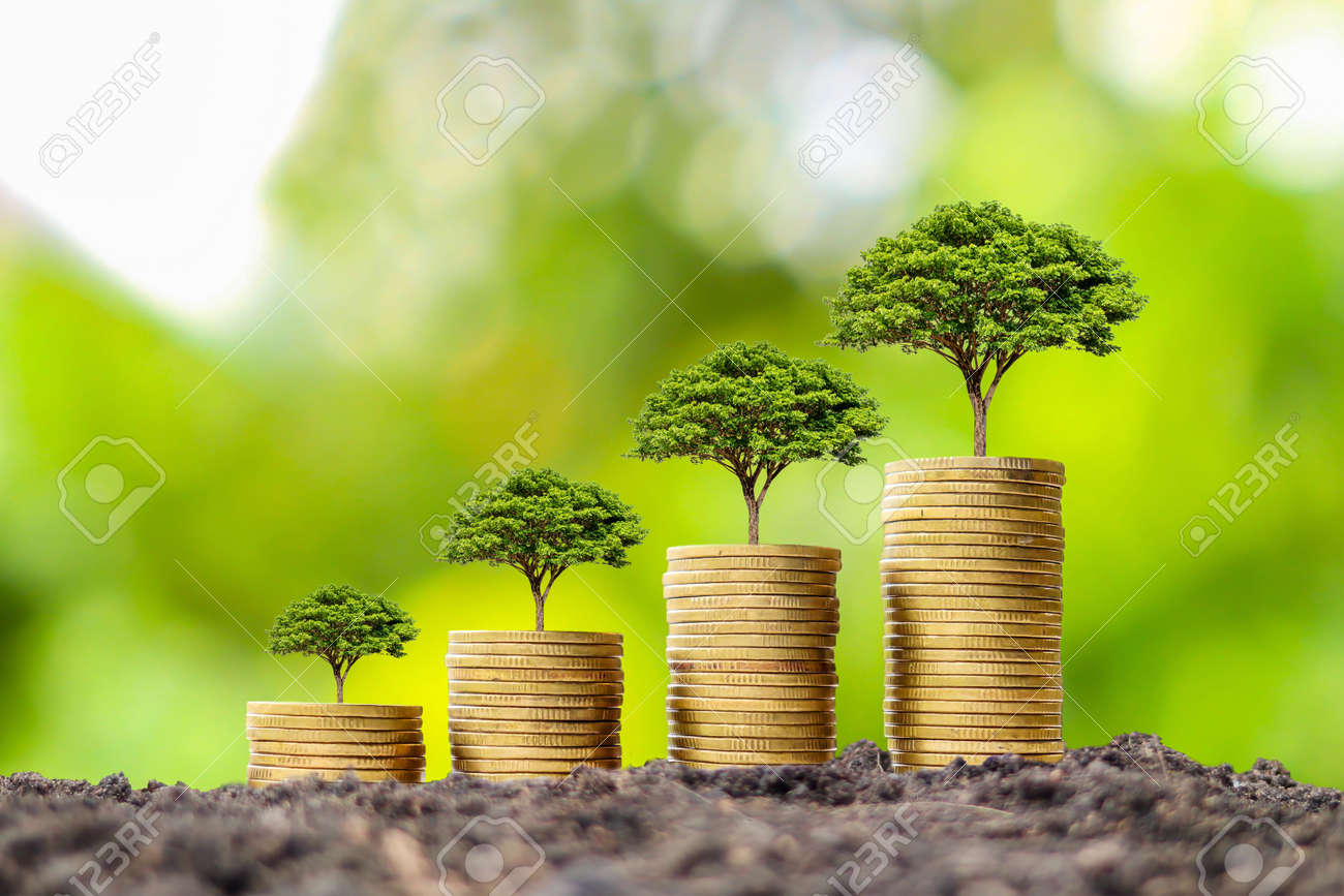 Coin pile with growing tree on top of coin, financial business success idea and money growth. - 159290821