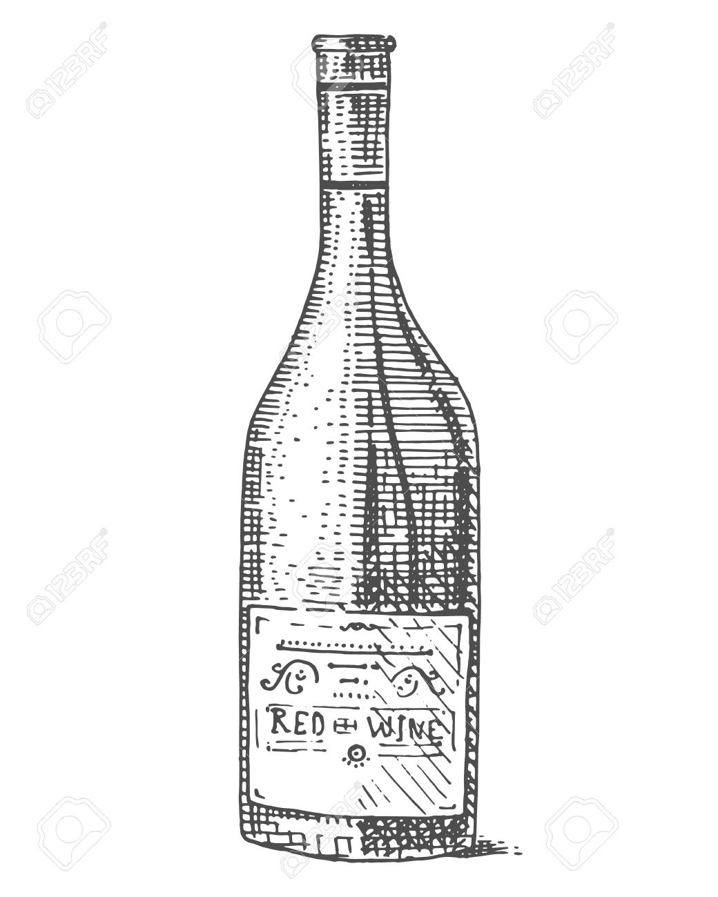 Wine Bottle Hand Drawn Engraved Old Looking Vintage Illustration