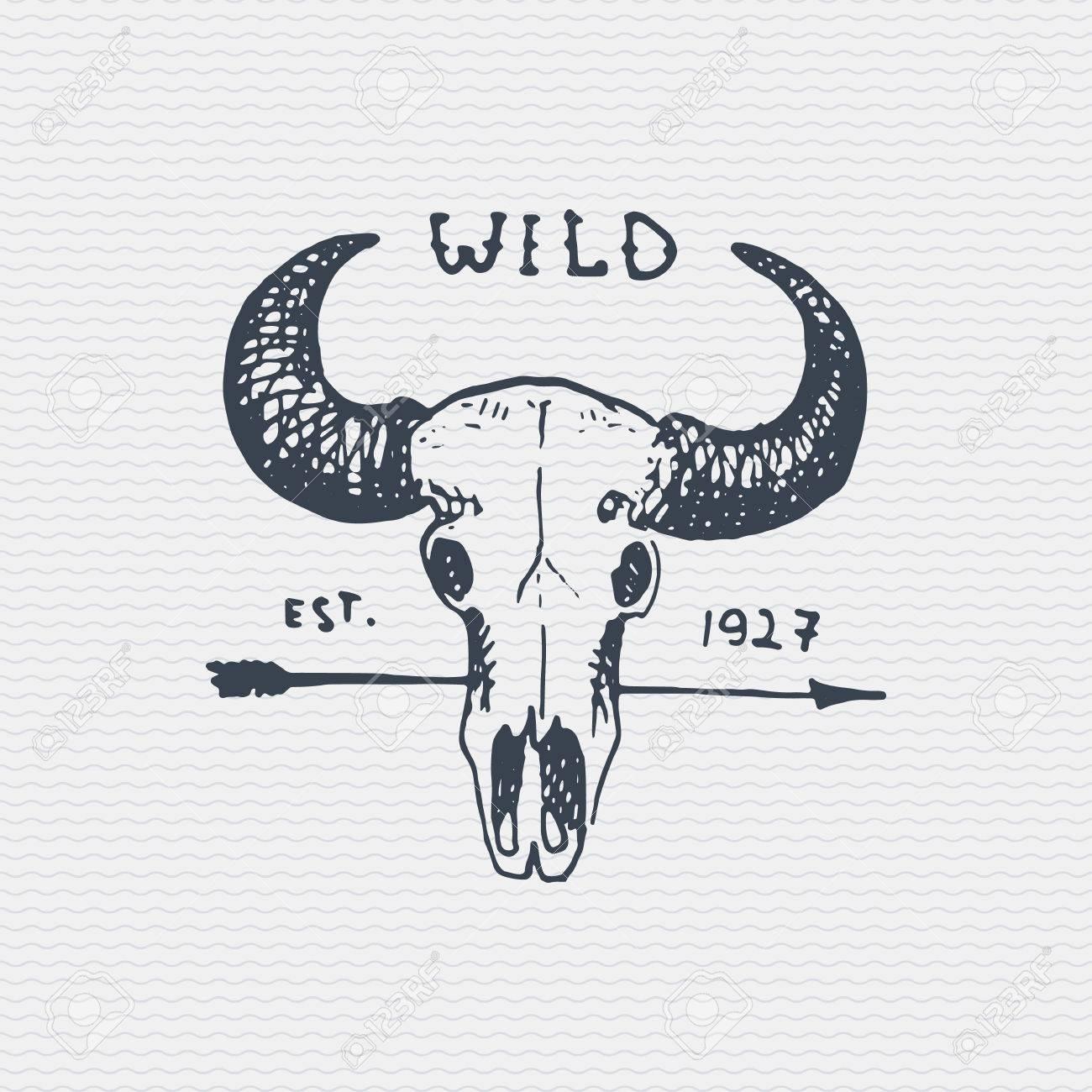 Insignia Grabada Vintage, Etiqueta Con Cráneo De Búfalo, Logotipo ...